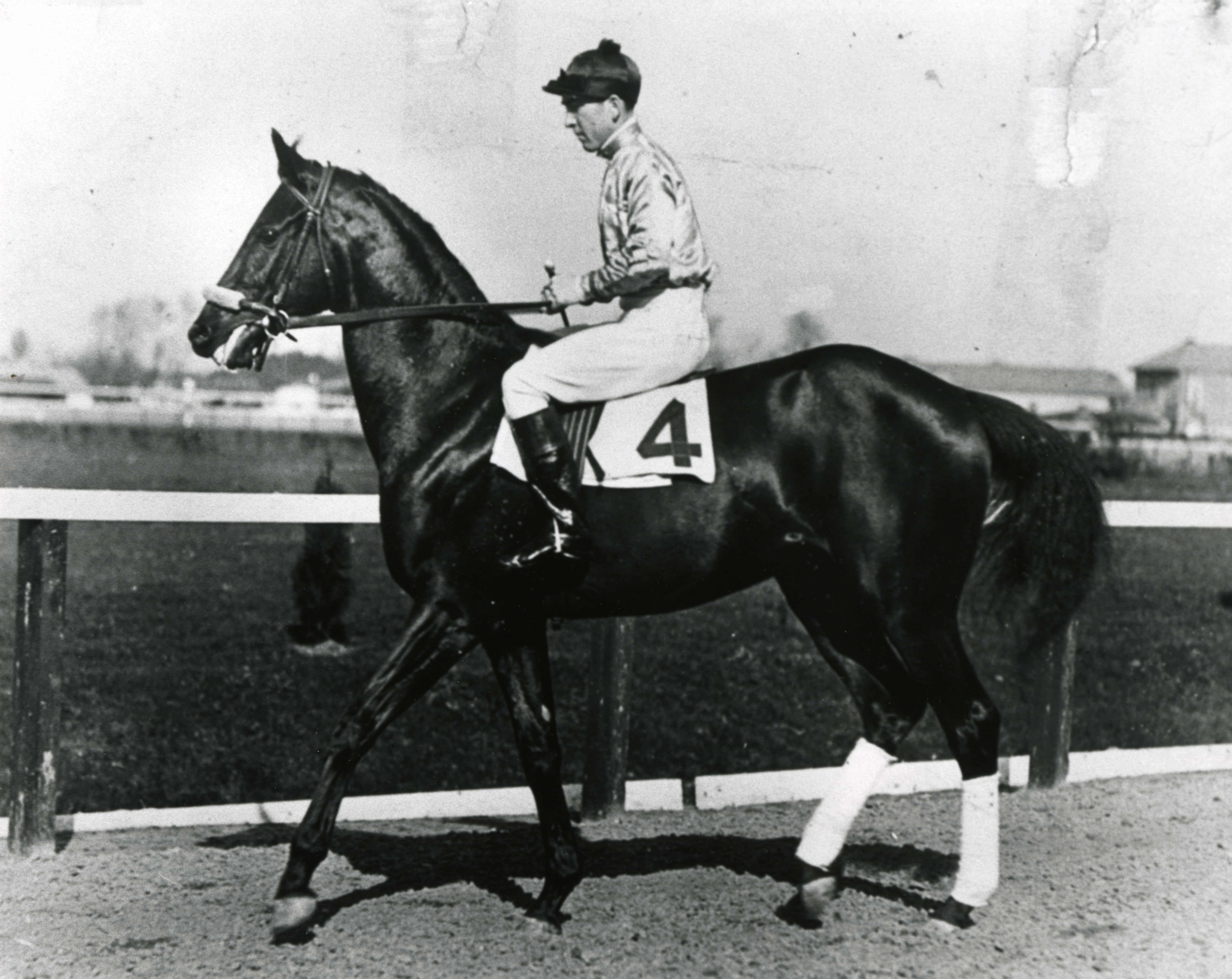 Black Gold warming up before a race in 1923 (The BloodHorse/Museum Collection)