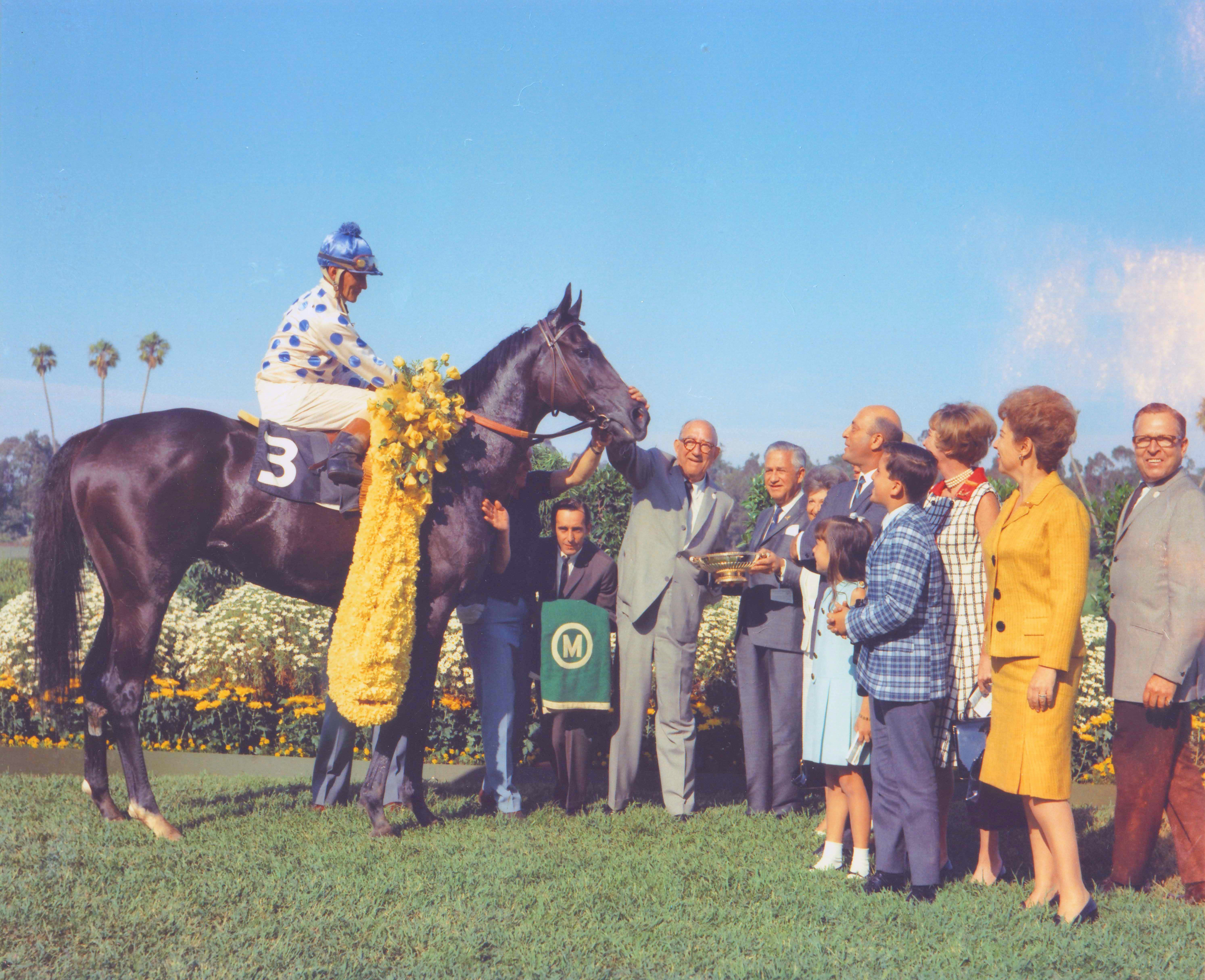 Native Diver in the winners circle after capturing his third straight victory in the Hollywood Gold Cup (Bill Mochon/Museum Collection)