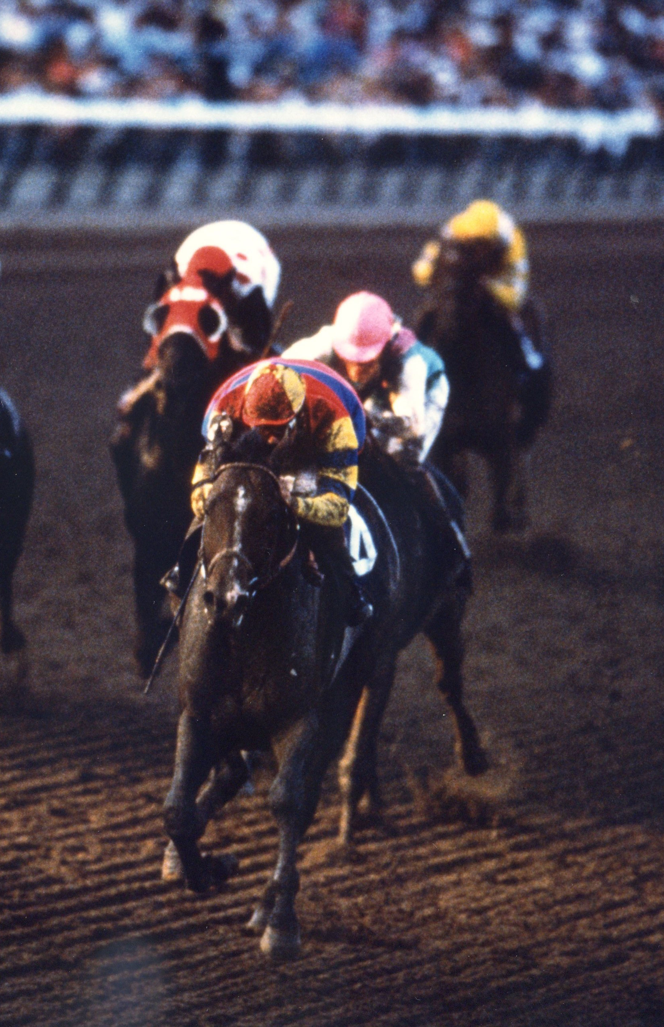 A.P. Indy (Eddie Delahoussaye up) turning for home in the 1992 Breeders' Cup Classic at Gulfstream Park (Breeders' Cup Photo/Museum Collection)