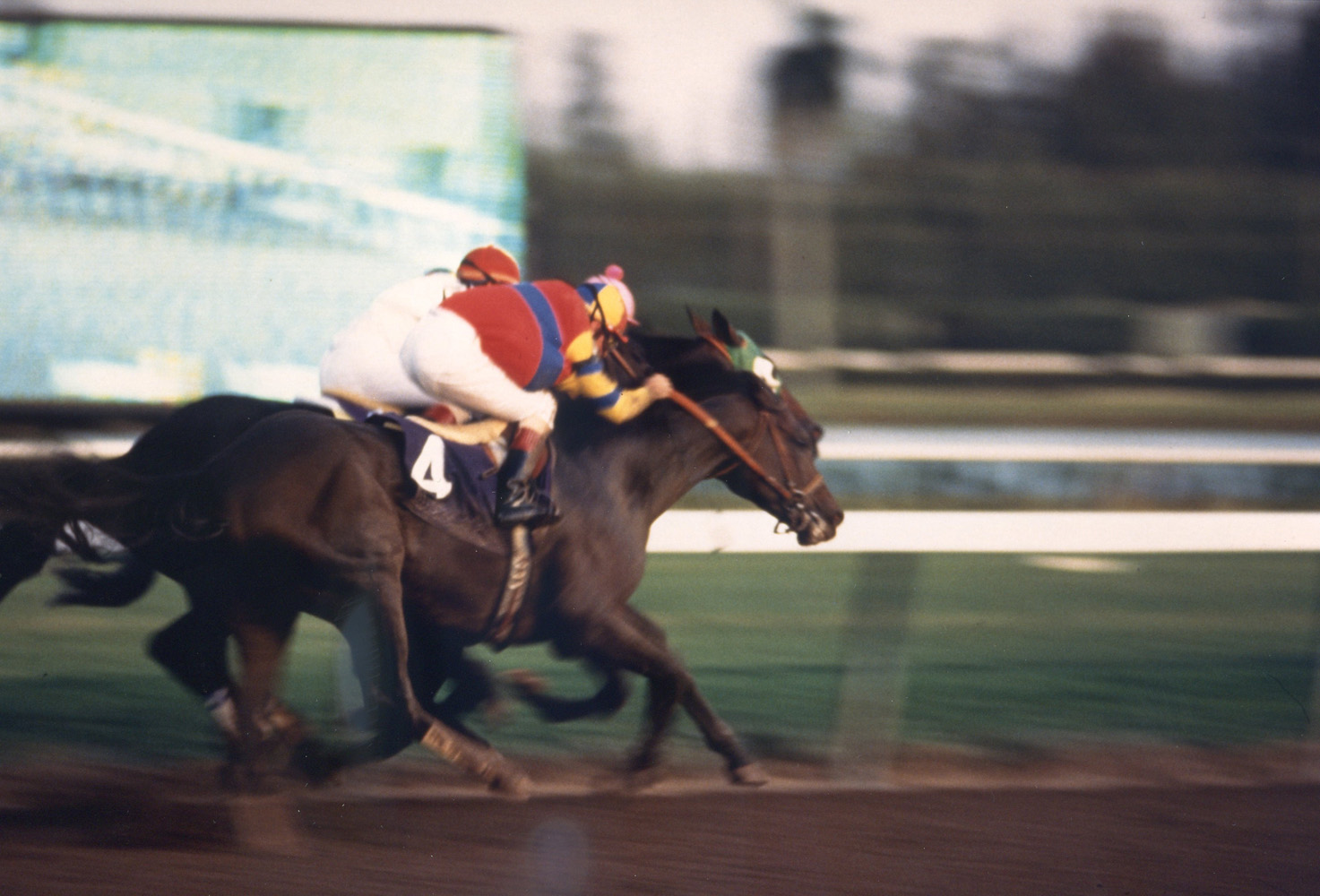 A.P. Indy (Eddie Delahoussaye up) during the 1992 Breeders' Cup Classic (Breeders' Cup Photo/Museum Collection)