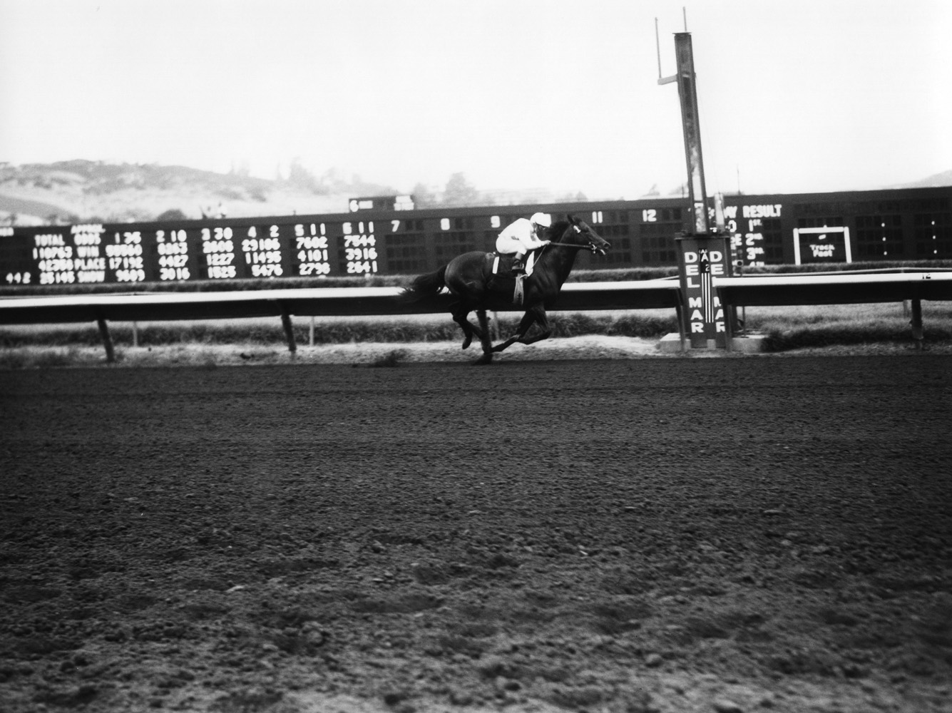 Ack Ack (Bill Shoemaker up) racing at Del Mar Thoroughbred Club, September 1970 (Del Mar Thoroughbred Club/Museum Collection)