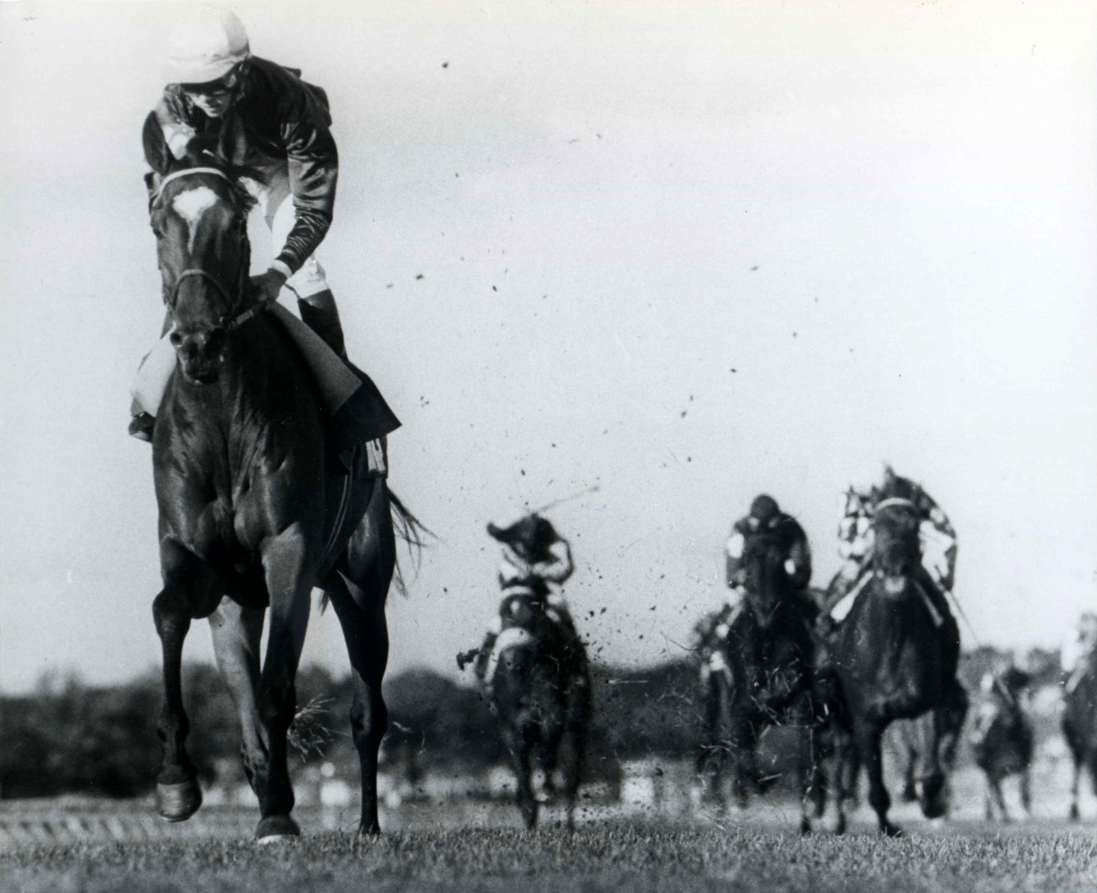 All Along races to victory in the 1983 Turf Classic at Aqueduct (Bob Coglianese/Museum Collection)