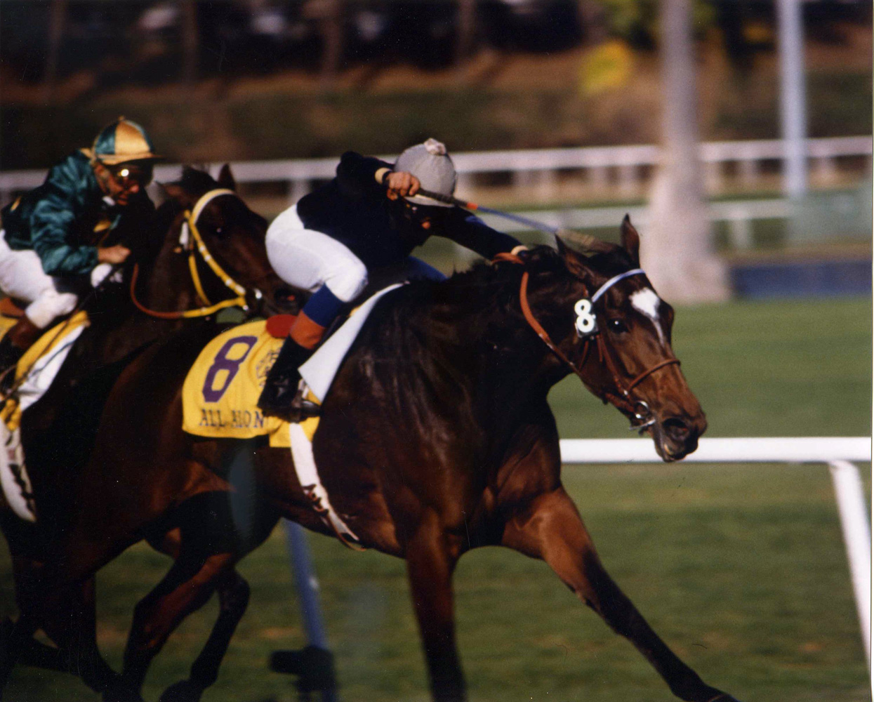 All Along at the 1984 Breeders' Cup at Hollywood Park (Katey Barrett/Museum Collection)