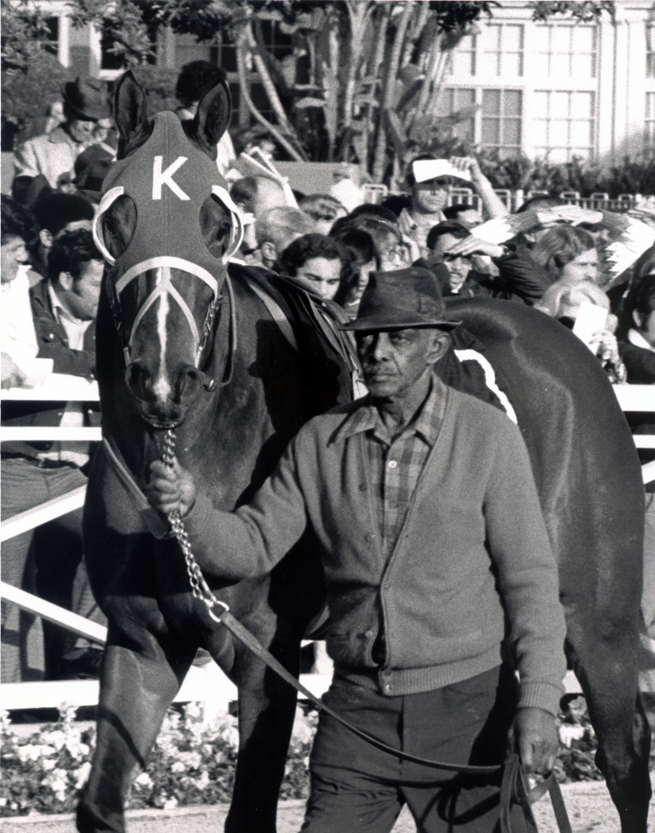 Ancient Title in the Santa Anita paddock (Bill Mochon/Museum Collection)