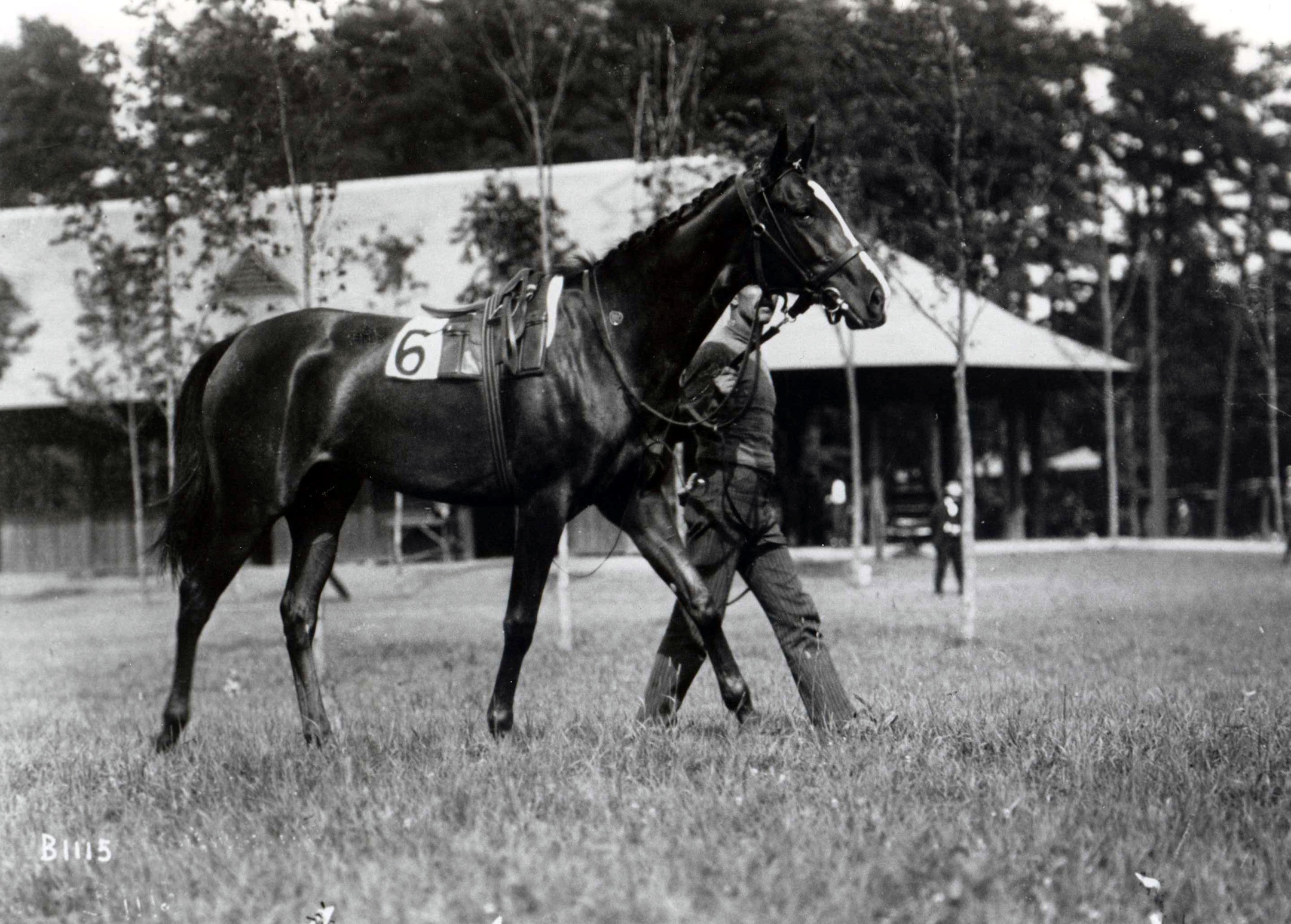 Artful walking around the paddock (Keeneland Library Cook Collection/Museum Collection)