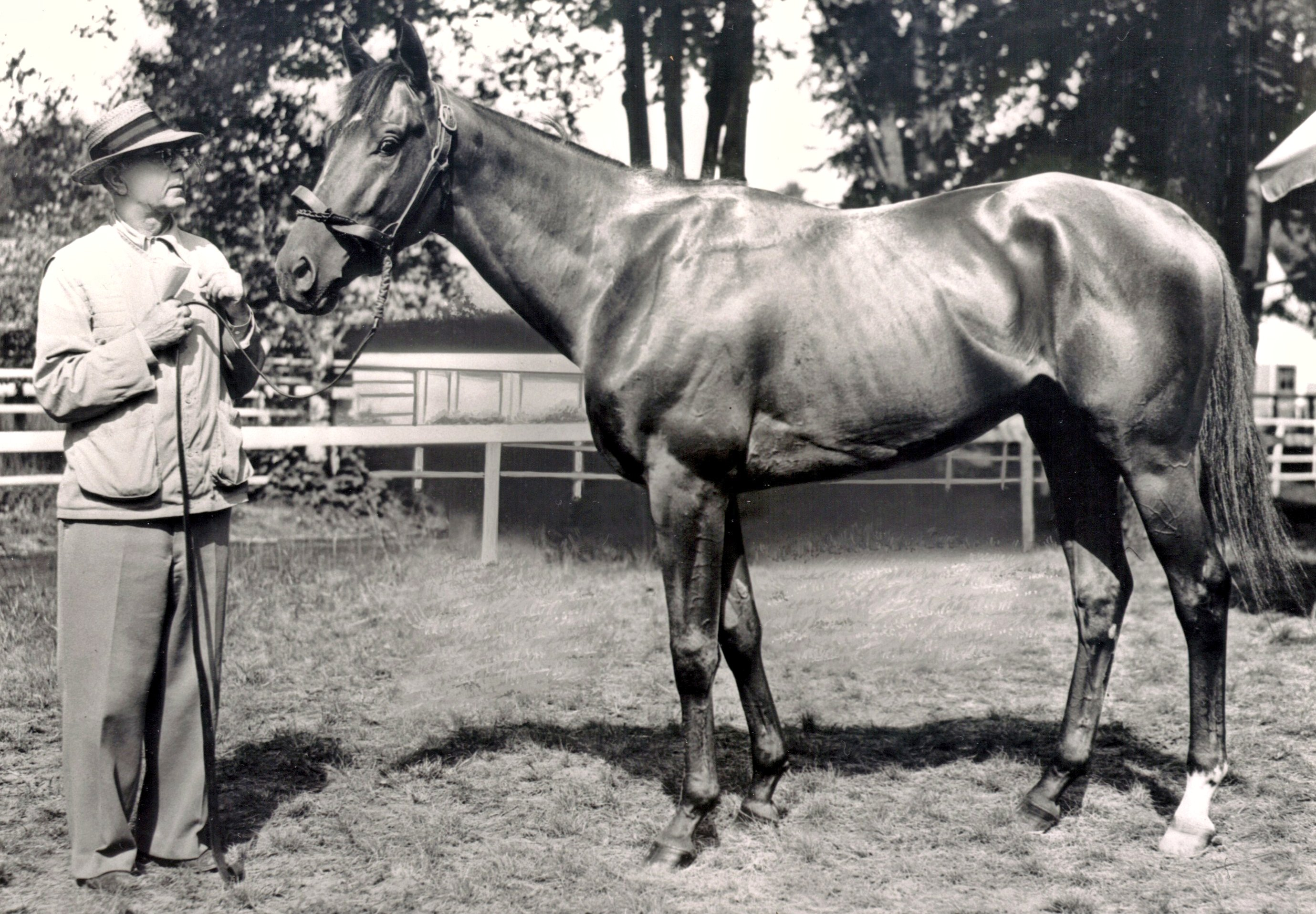 Hall of Fame trainer Max Hirsch with Assault (Keeneland Library Morgan Collection/Museum Collection)