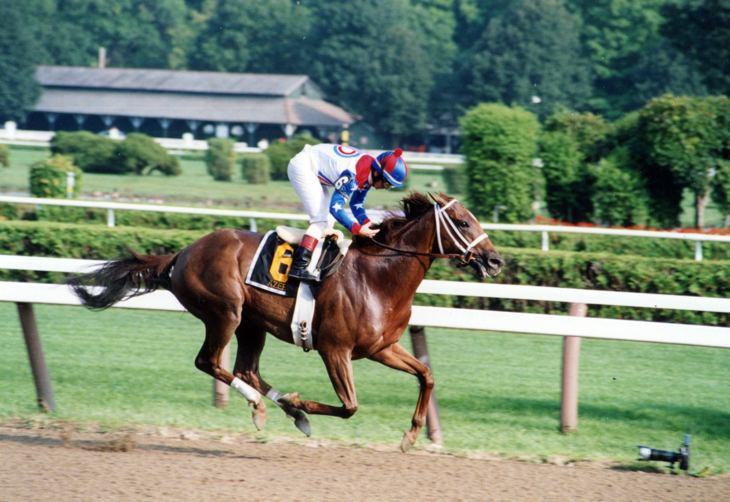 Azeri (Pat Day up) winning the 2004 Go for Wand Handicap at Saratoga (Mike Pender/Museum Collection)