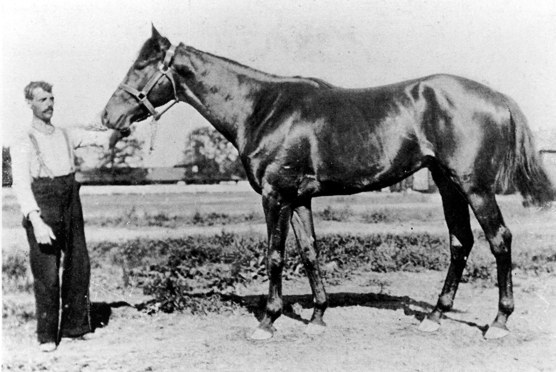 Ben Brush with handler (Keeneland Library Collection/Museum Collection)