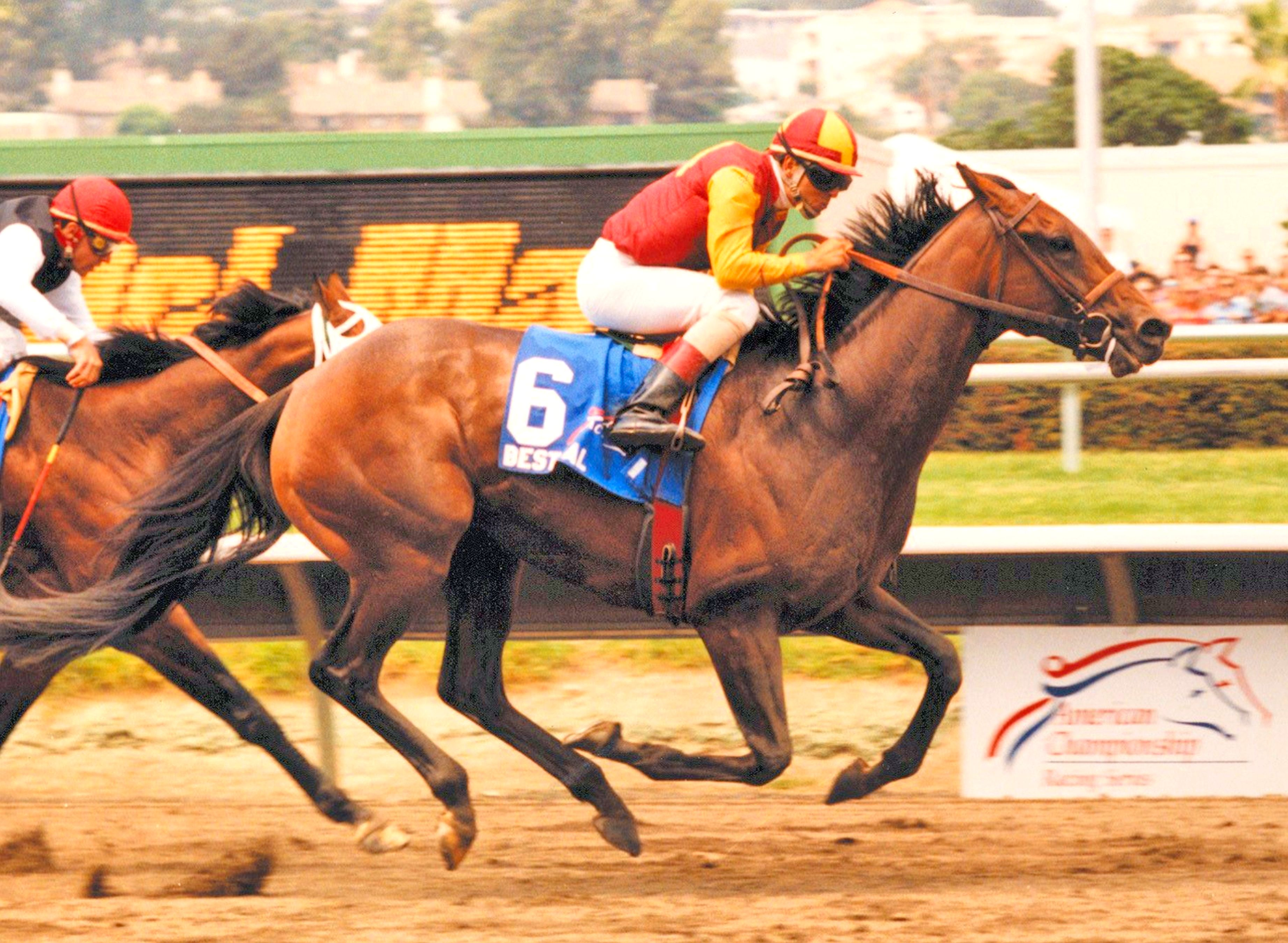 Best Pal (Patrick Valenzuela up) winning the 1991 Pacific Classic at Del Mar (Del Mar Thoroughbred Club)