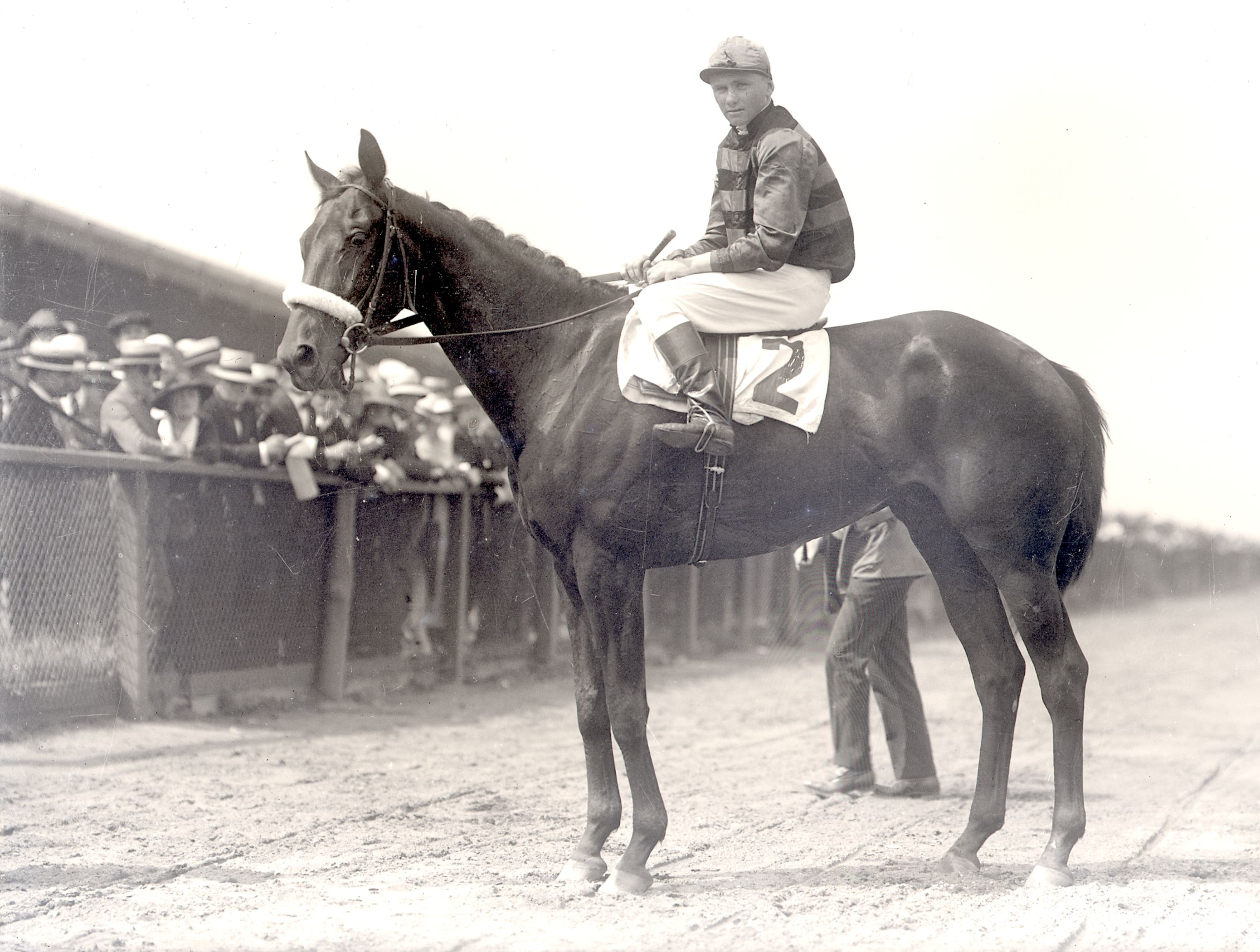 Billy Kelly (Earl Sande up) on the racetrack (Keeneland Library Cook Collection)