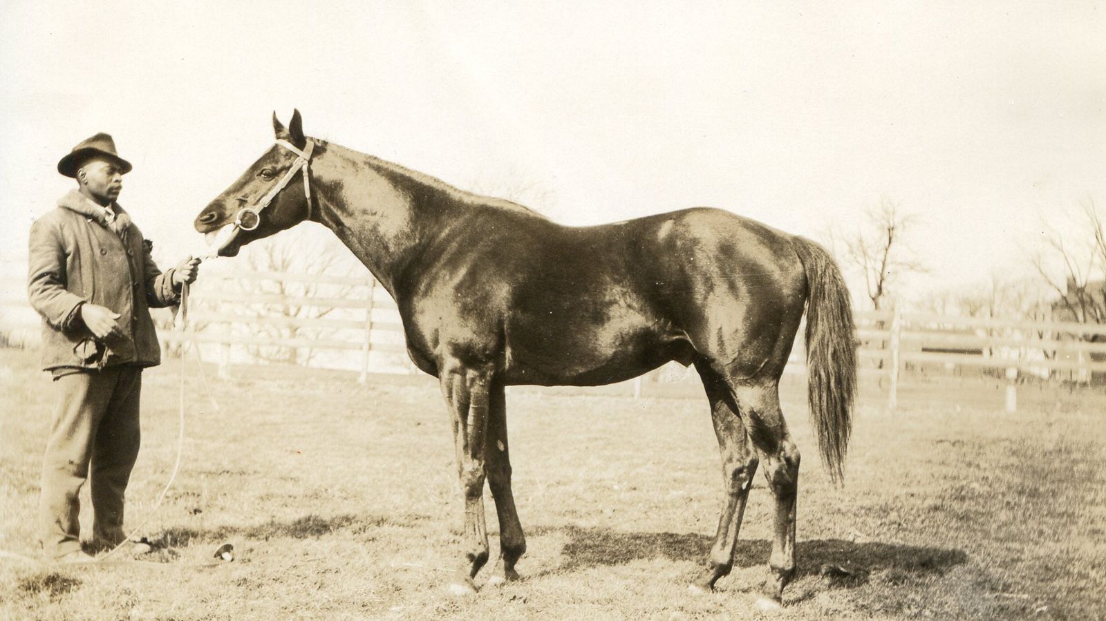 Black Gold in 1925 (L. S. Sutcliffe/Museum Collection)