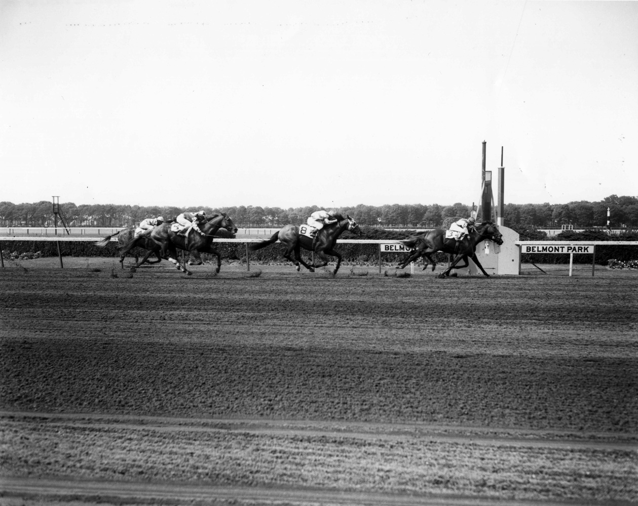 Bold Ruler (Eddie Arcaro up) winning the 1958 Suburban Handicap at Belmont by a nose (Keeneland Library Morgan Collection/Museum Collection)