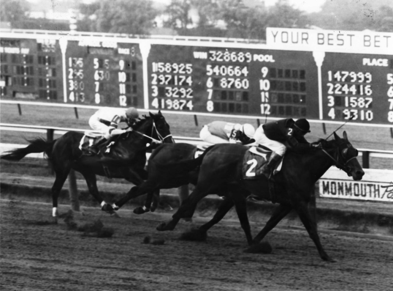 Buckpasser (Braulio Baeza up) winning the 1965 Sapling Stakes at Monmouth Park (Jim Raftery Turfotos/Museum Collection)
