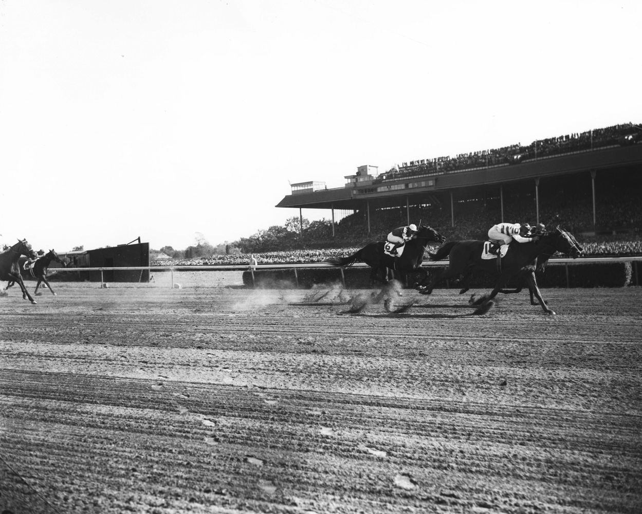 Busher (Eddie Arcaro up) racing to victory in the 1944 Matron at Belmont Park (Keeneland Library Morgan Collection/Museum Collection)