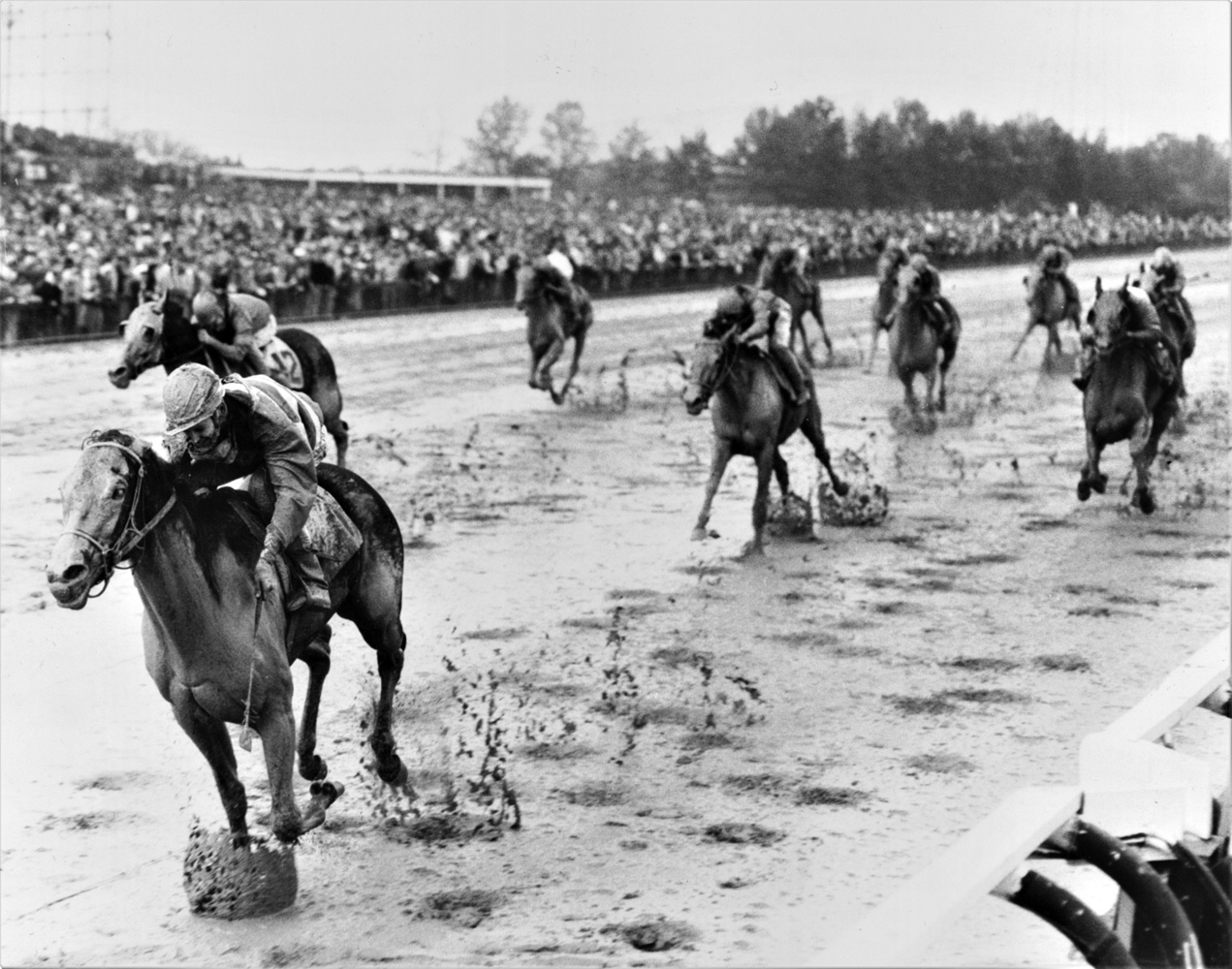 Carry Back (John Sellers up) winning the 1960 Garden State at Garden State Park (Jim Raftery Turfotos)