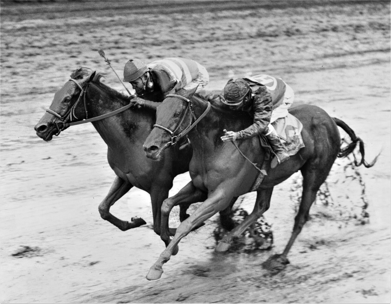 Carry Back (John Sellers up) wins the 1961 Florida Derby at Gulfstream Park by a head (Jim Raftery Turfotos)