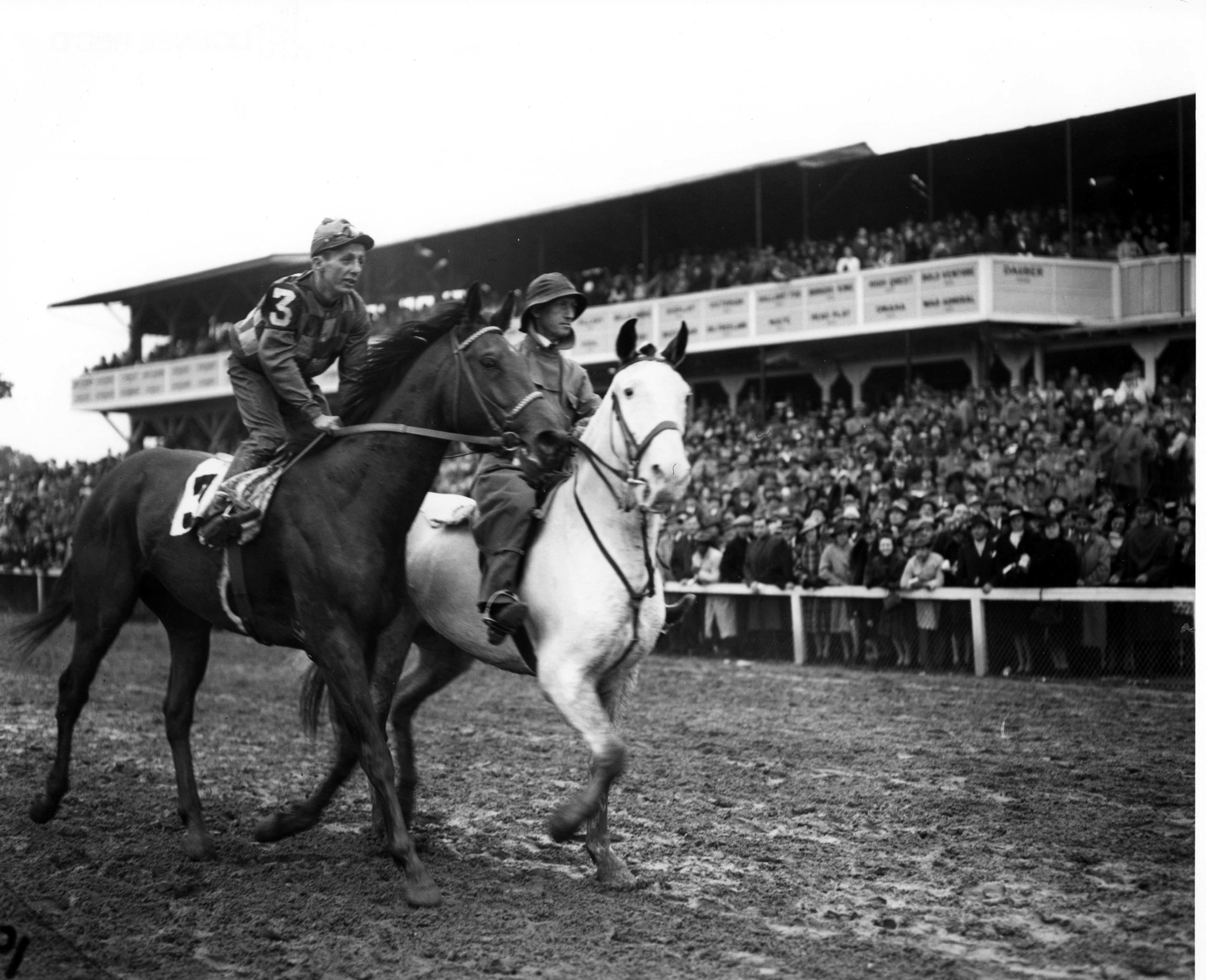 Challedon at the 1939 Preakness Stakes at Pimlico Race Course (Keeneland Library Morgan Collection/Museum Collection)