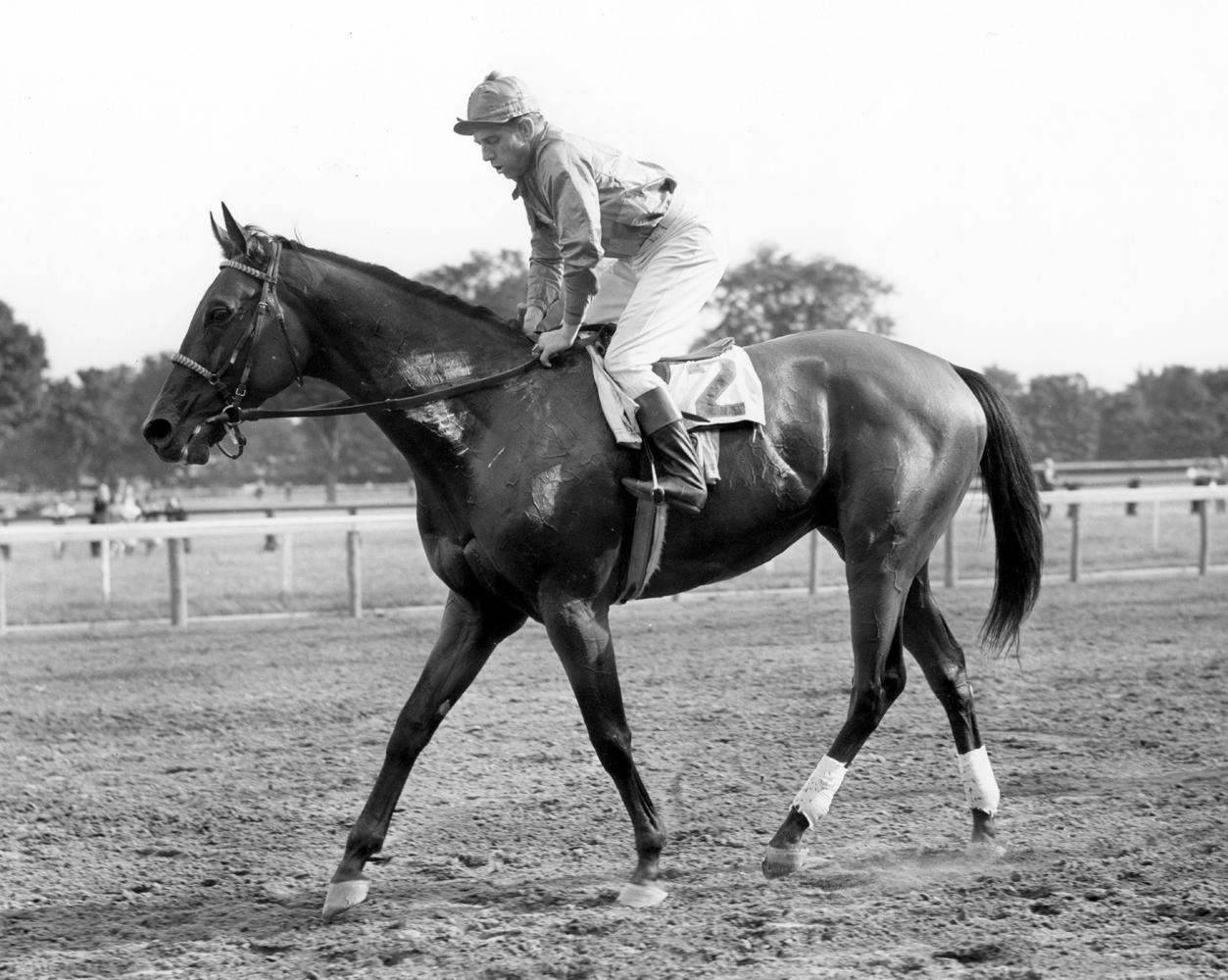 Challedon (George Woolf up) after winning the 1940 Whitney at Saratoga (Keeneland Library Cook Collection/Museum Collection)
