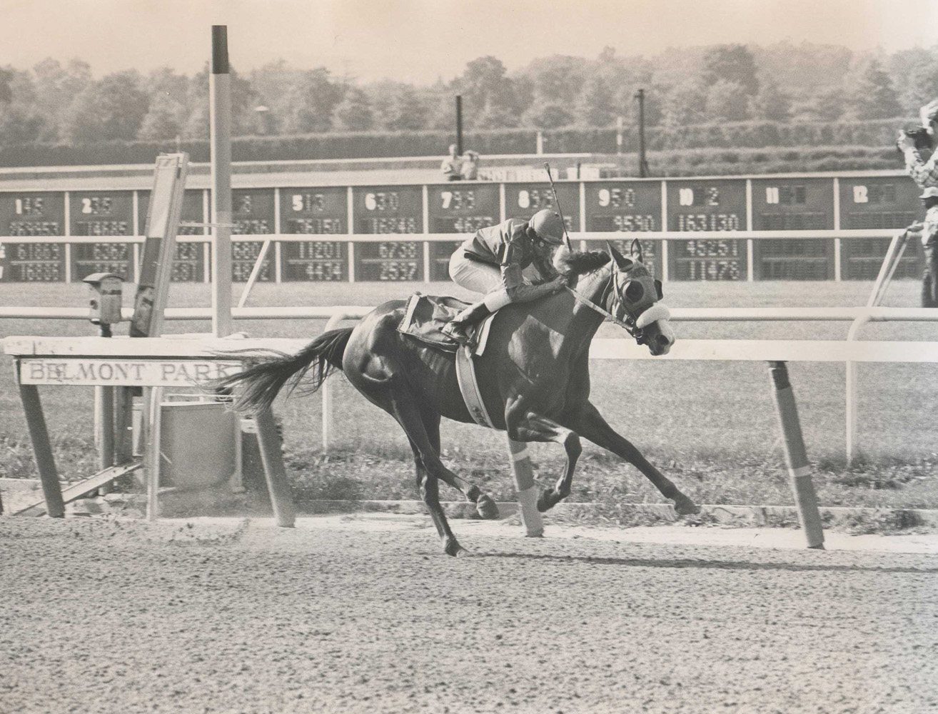 Chris Evert (Jorge Velasquez up) winning the 1974 Coaching Club American Oaks at Belmont Park (Ray Woolfe, Jr./Museum Collection)