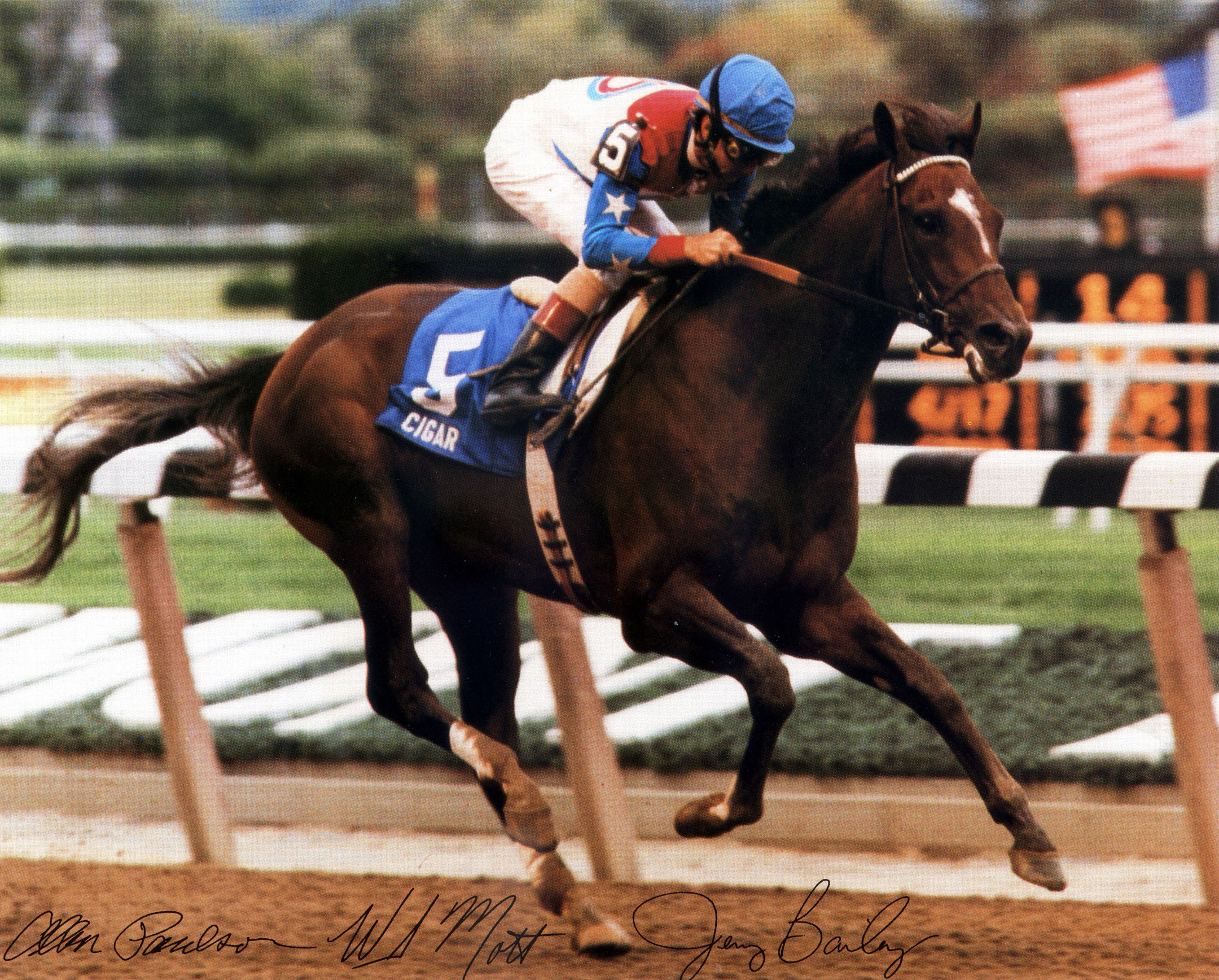 Cigar (Jerry Bailey up) wins the 1995 Woodward at Belmont Park (NYRA/Bob & Adam Coglianese /Museum Collection)