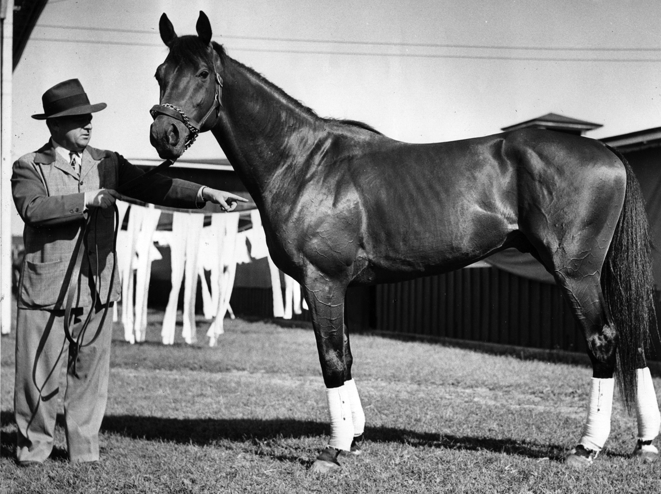"""Citation with trainer H. A. """"Jimmy"""" Jones (Museum Collection)"""
