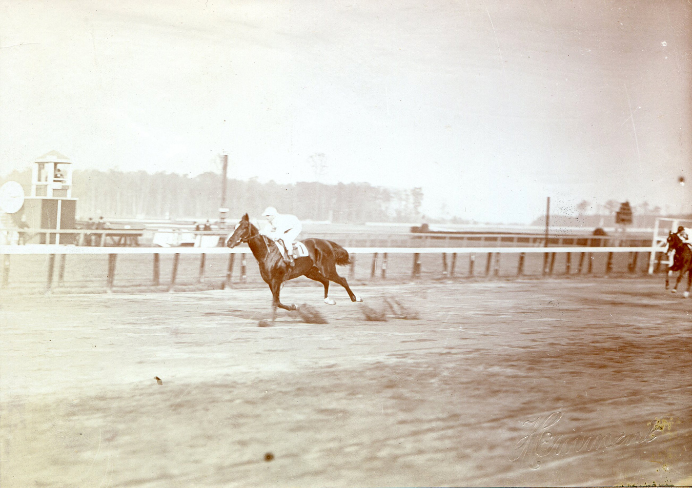 Colin (Walter Miller up) winning the 1907 National Stallion Stakes at Belmont Park (J. C. Hemment/Museum Collection)