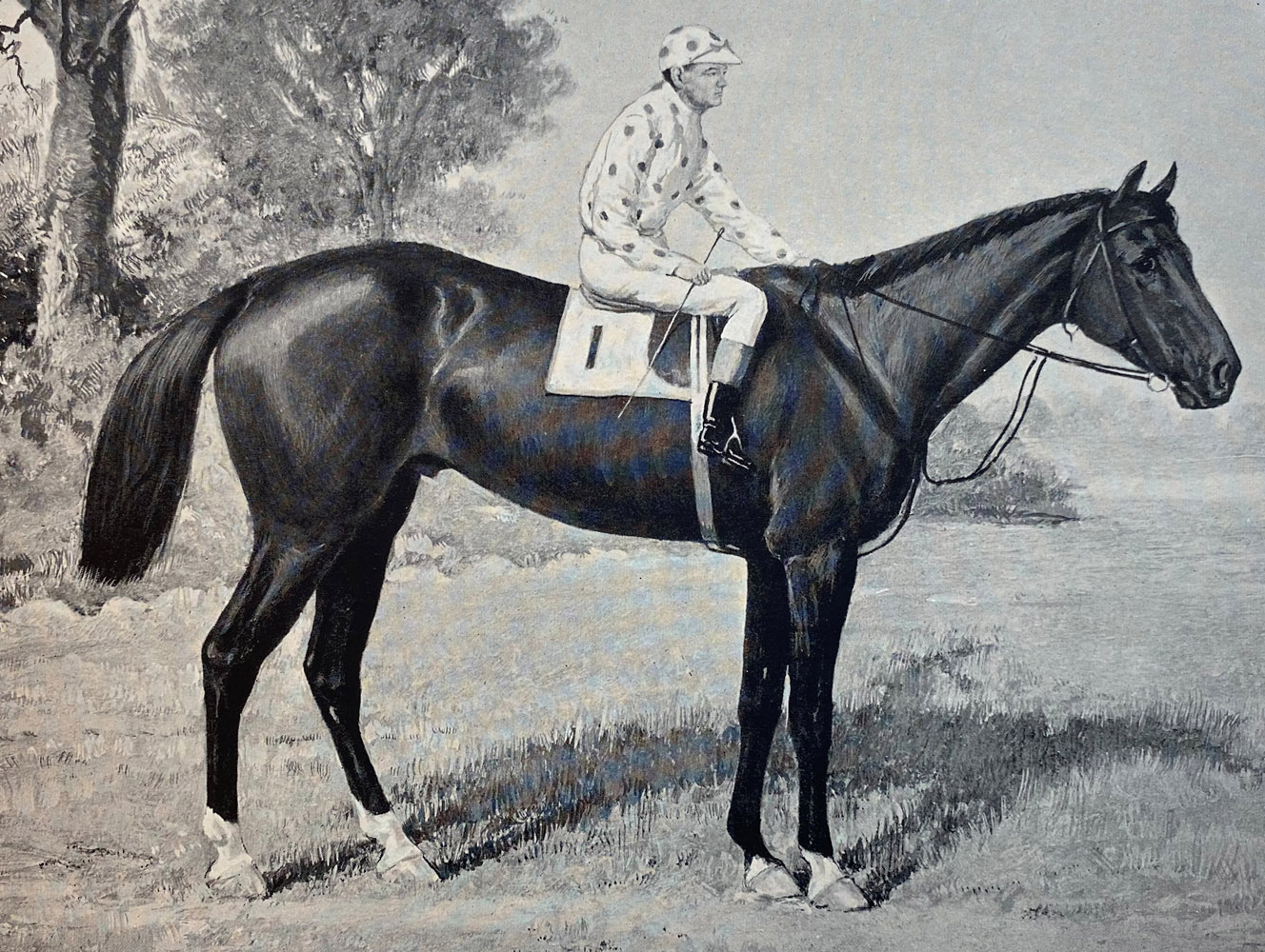 """Illustration of Commando from """"Racing in America, 1866-1921"""" (Museum Collection)"""