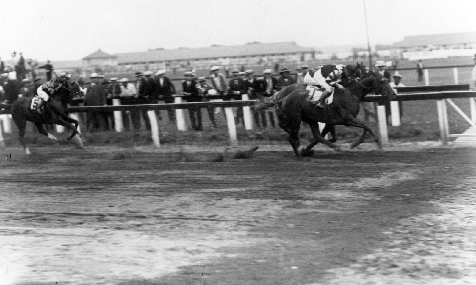 Crusader (Earl Sande up) winning the 1926 Dwyer Stakes at Aqueduct (Keeneland Library Cook Collection/Museum Collection)