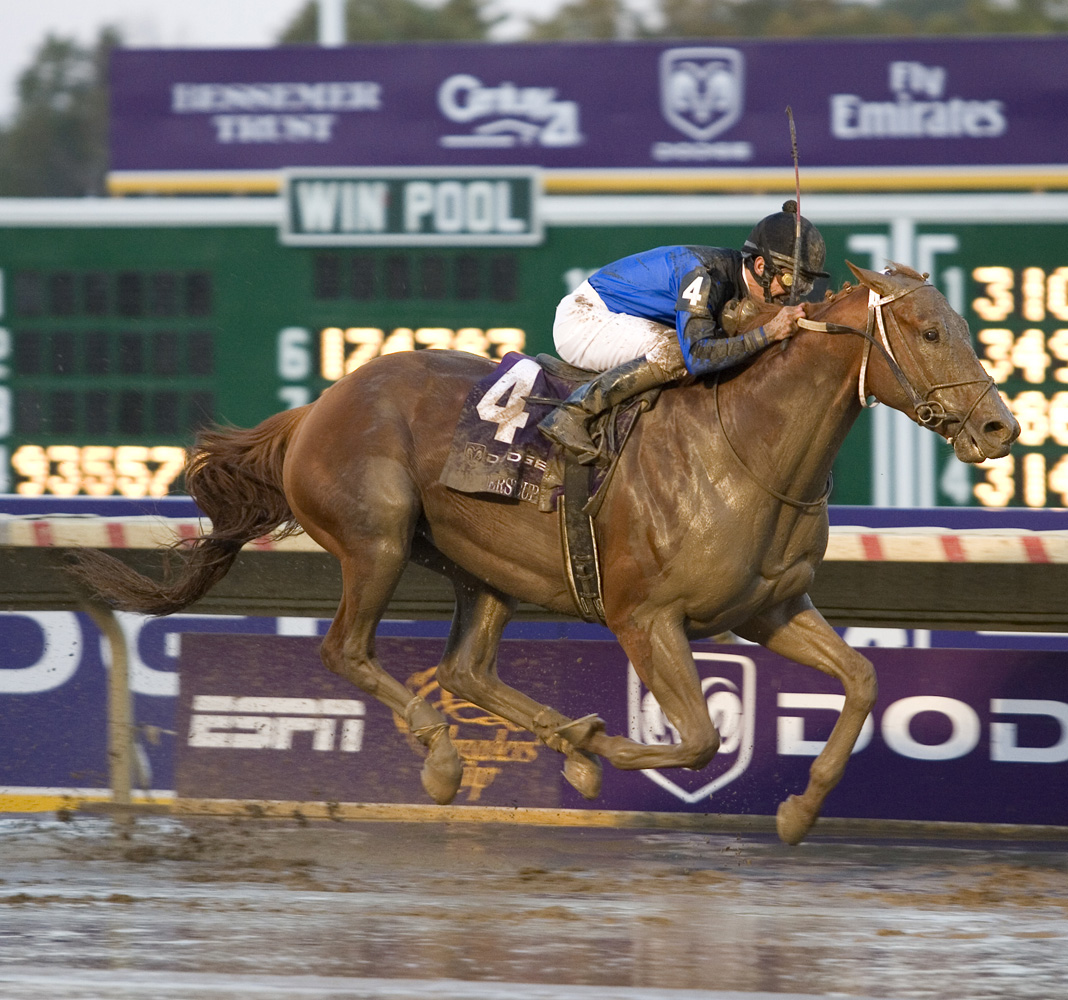 Curlin wins the 2007 Breeders' Cup Classic at Monmouth Park (Barbara D. Livingston/Museum Collection)