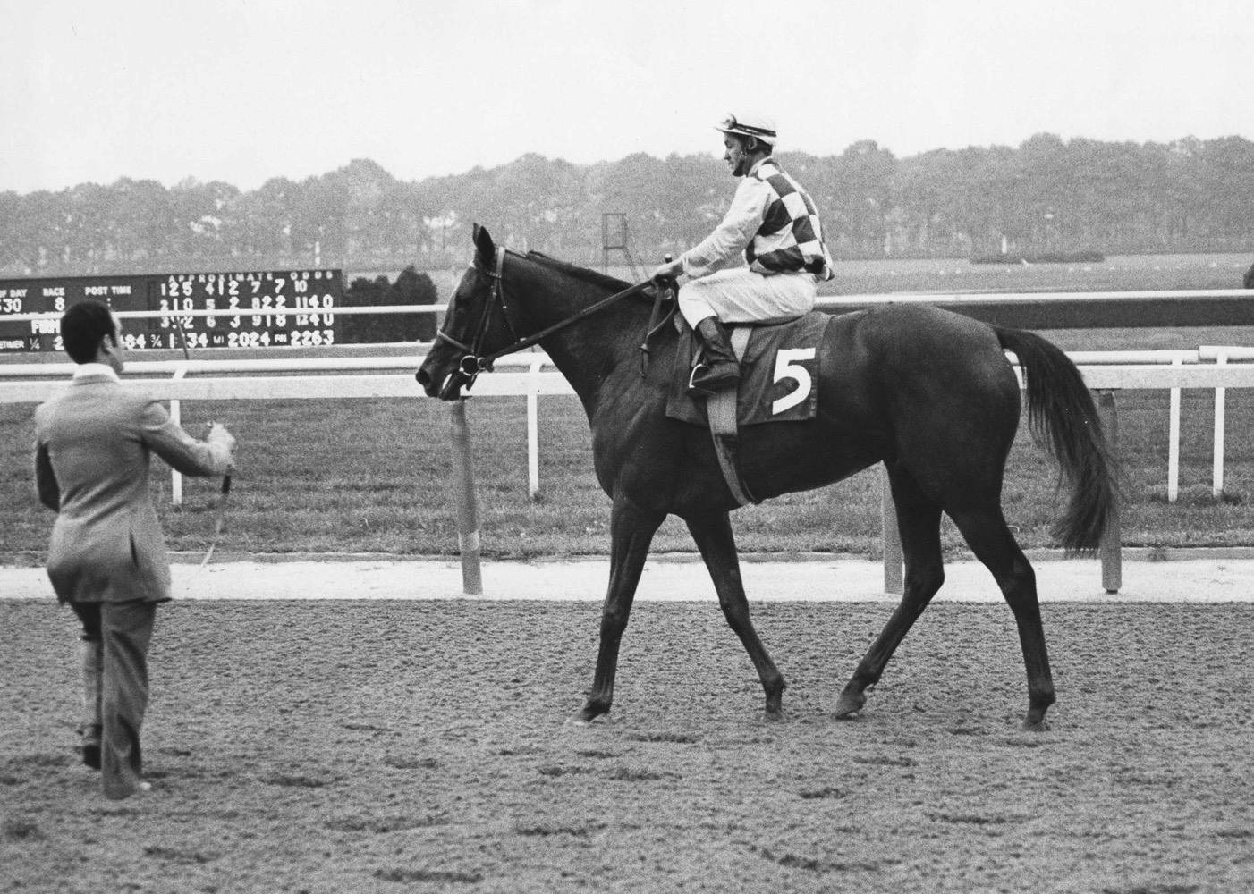 Dahlia (Ron Turcotte up) after winning the 1974 Man o' War Stakes at Belmont Park (Ray Woolfe, Jr./Museum Collection)