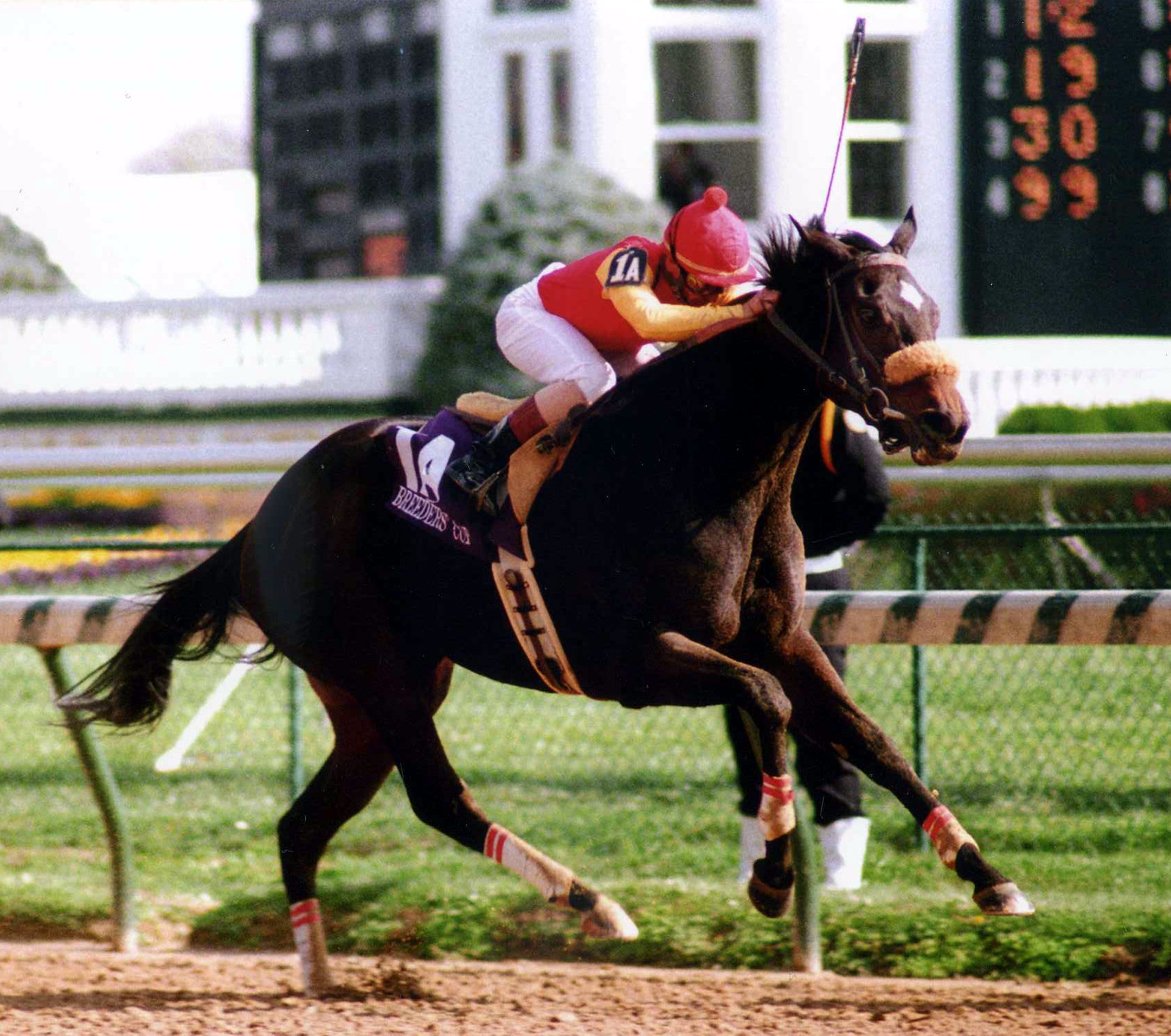 Dance Smartly (Pat Day up) winning the 1991 Breeders' Cup Distaff at Churchill Downs (Barbara D. Livingston/Museum Collection)