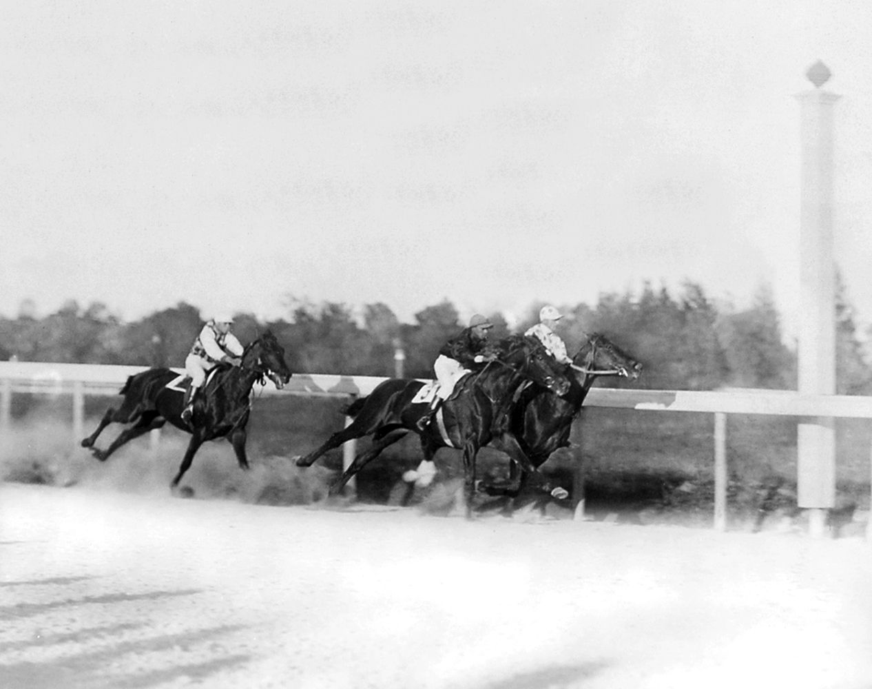 Domino leads in the great match race at Morris Park with Henry of Navarre and Clifford (Keeneland Library Hemment Collection)