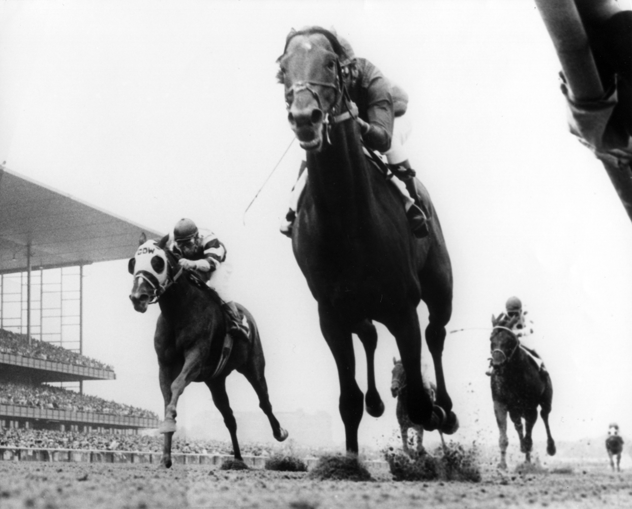 Dr. Fager (Braulio Baeza up) winning the 1968 Suburban Handicap at Aqueduct (NYRA/Bob Coglianese /Museum Collection)