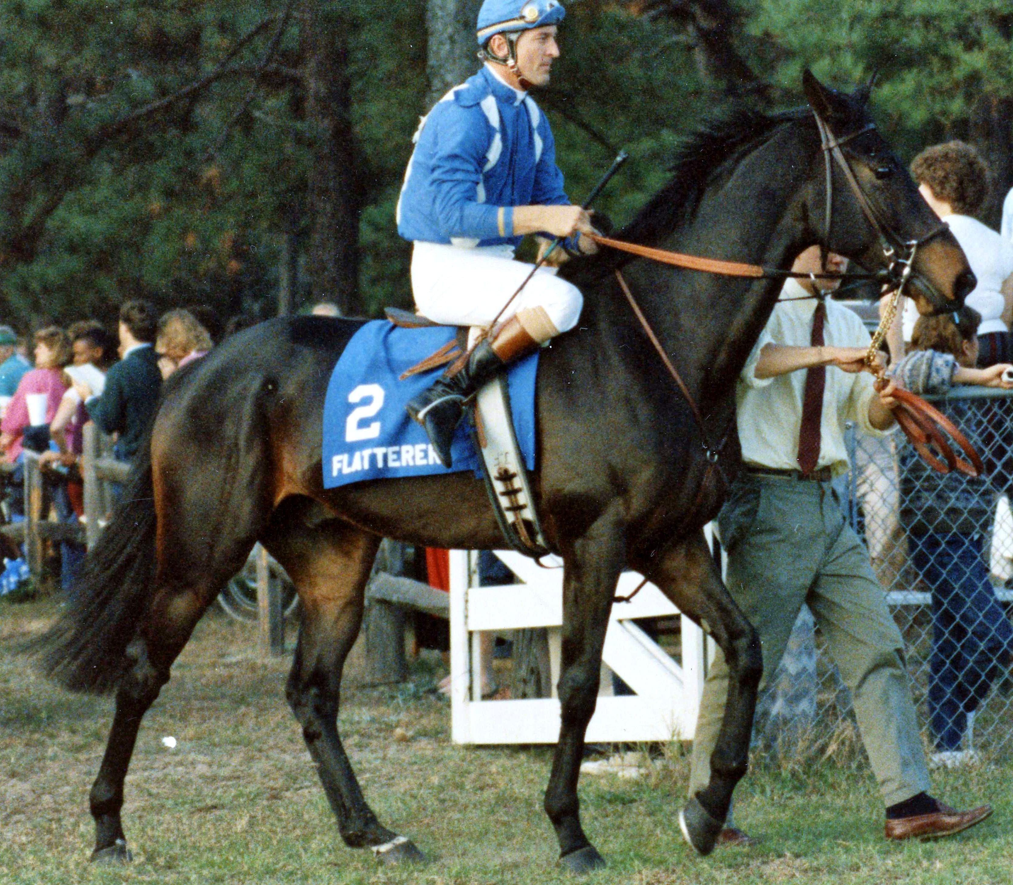 Flatterer (Jerry Fishback up) at the Colonial Cup (Catherine French/Museum Collection)