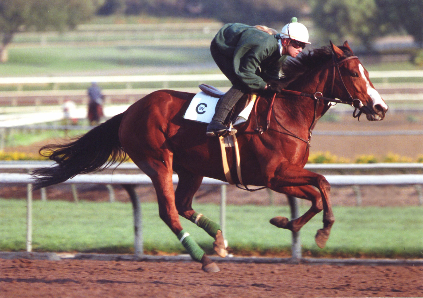 Flawlessly during morning workouts at Santa Anita in 1992 (Barbara D. Livingston/Museum Collection)