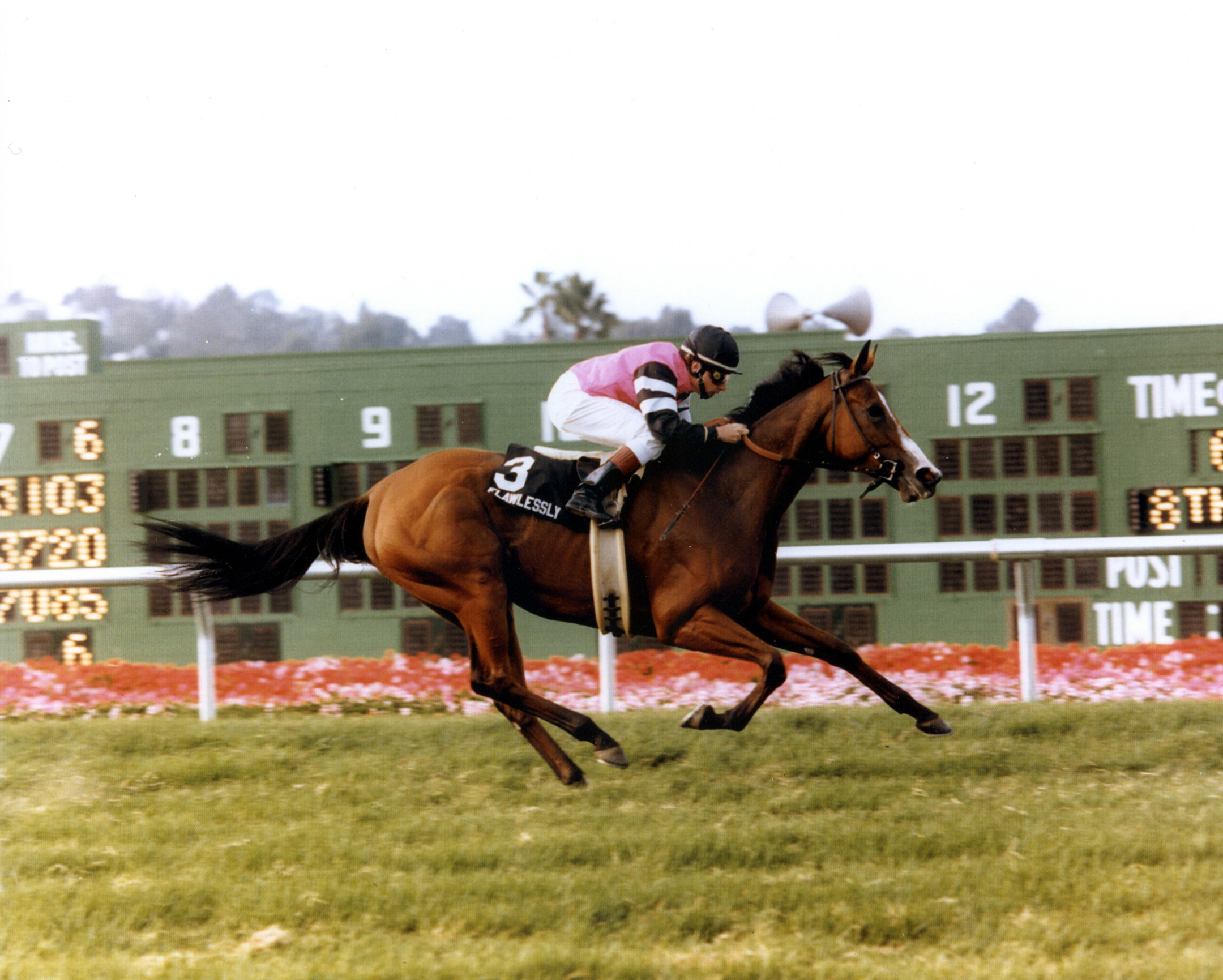 Flawlessly (Chris McCarron up) winning the 1991 Del Mar Oaks (Del Mar Thoroughbred Club/Museum Collection)