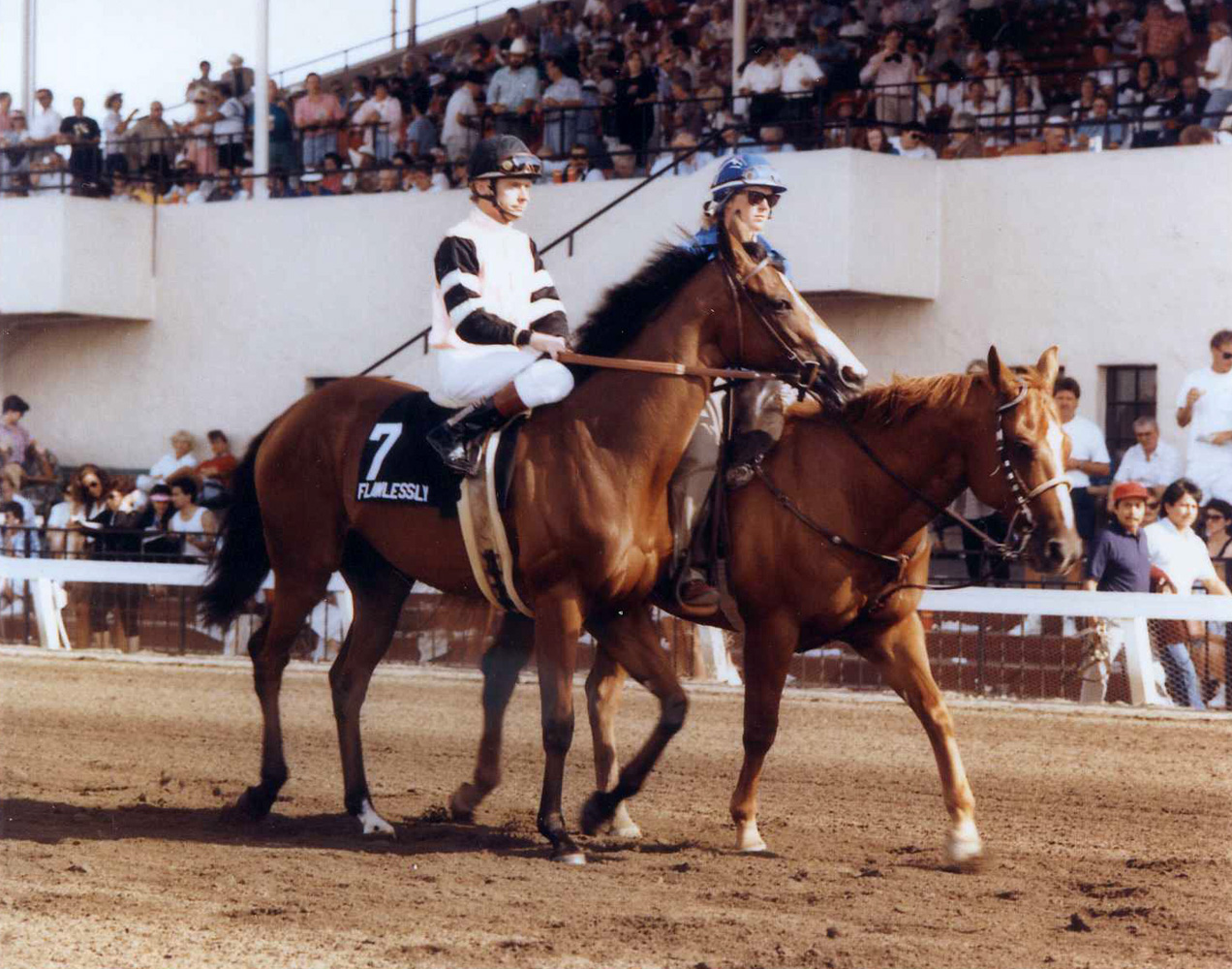 Flawlessly (Chris McCarron up) in the post parade for the 1991 San Clemente Handicap at Del Mar (Del Mar Thoroughbred Club/Museum Collection)