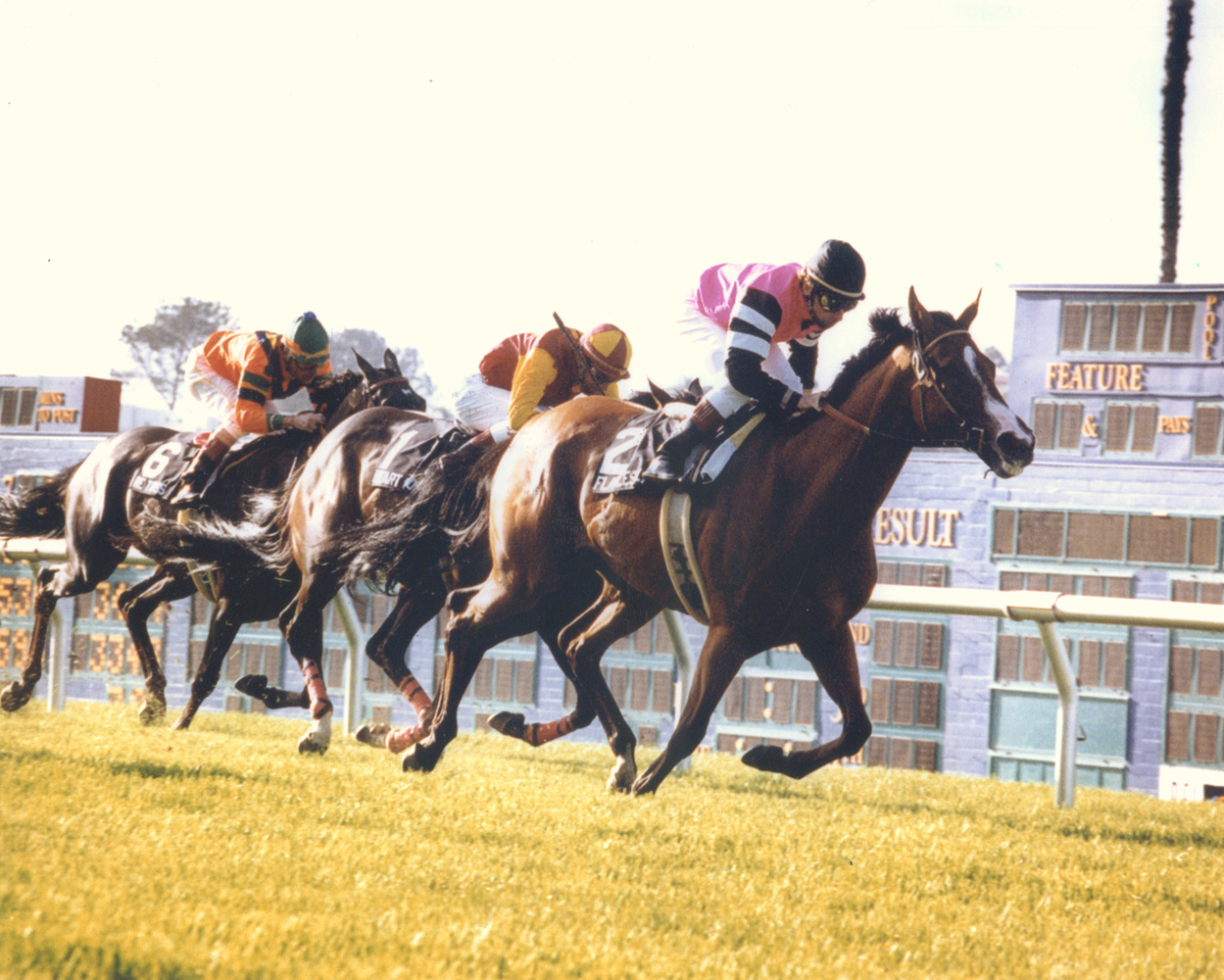 Flawlessly (Chris McCarron up) racing to victory in the 1993 Ramona Handicap at Del Mar (Del Mar Thoroughbred Club/Museum Collection)