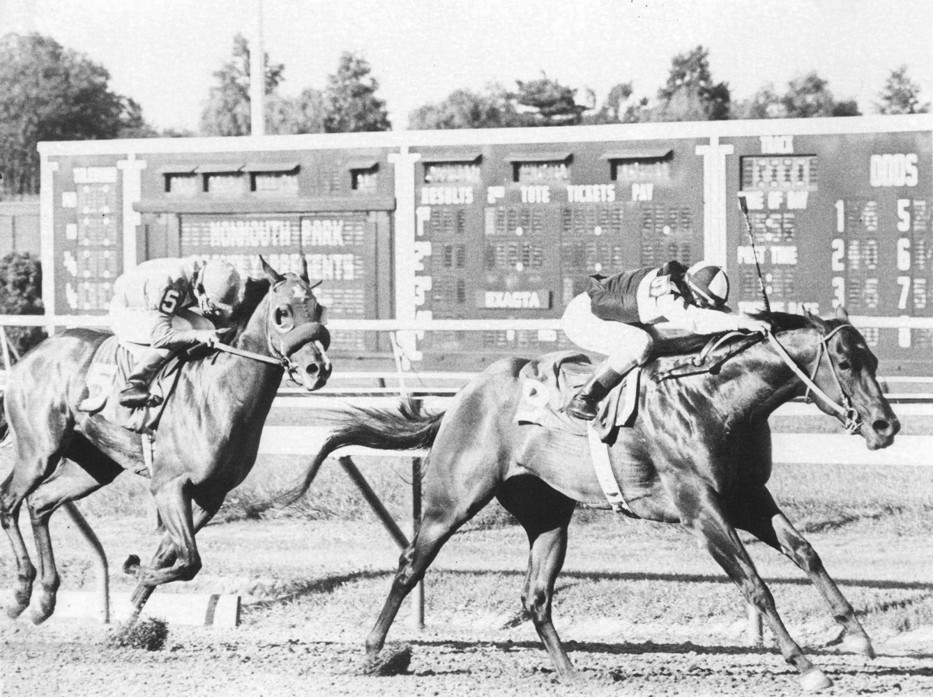 Foolish Pleasure (Jacinto Vasquez up) winning the 1974 Sapling Stakes at Monmouth Park (Museum Collection)