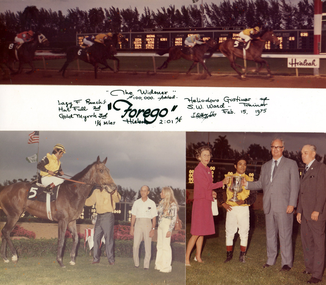 Win composite photograph for the 1975 Widener Handicap, won by Forego (Heliodoro Gustines up) (Jim Raftery Turfotos/Museum Collection)