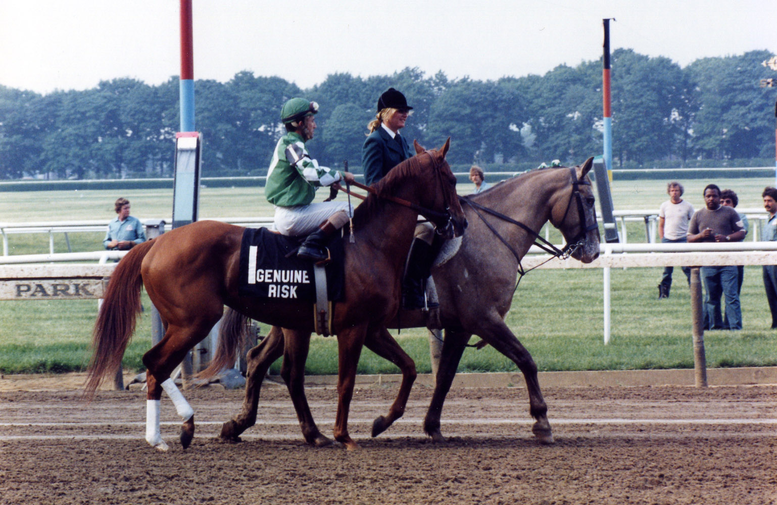 Genuine Risk (Jacinto Vasquez up) in the post parade for the 1980 Belmont Stakes. Like the Preakness, she finishes in second place (Barbara D. Livingston/Museum Collection)