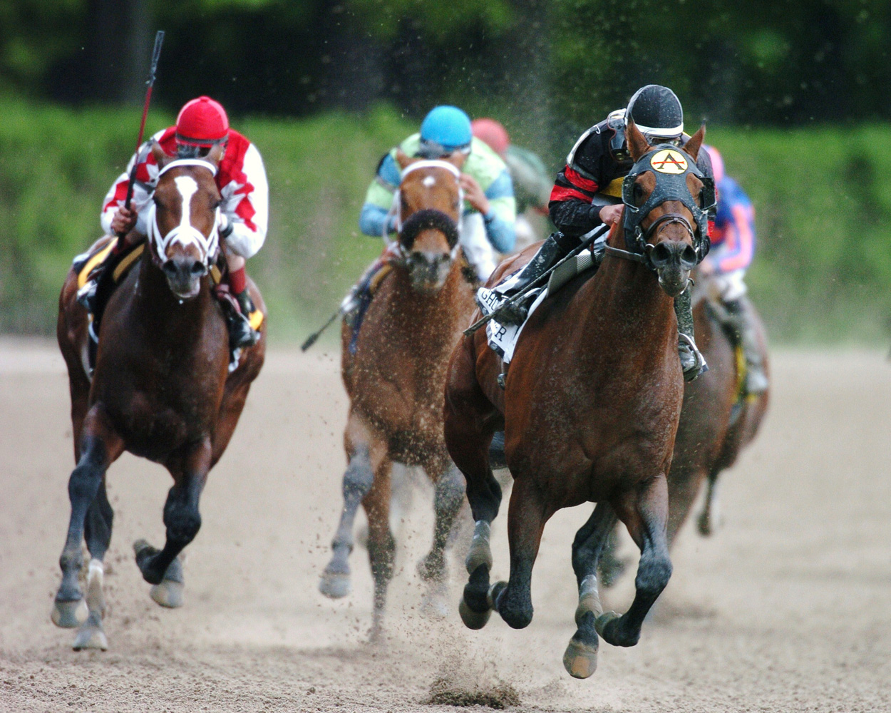 Ghostzapper (Javier Castellano up) turning for home in the 2005 Metropolitan Handicap, his final career race (NYRA)