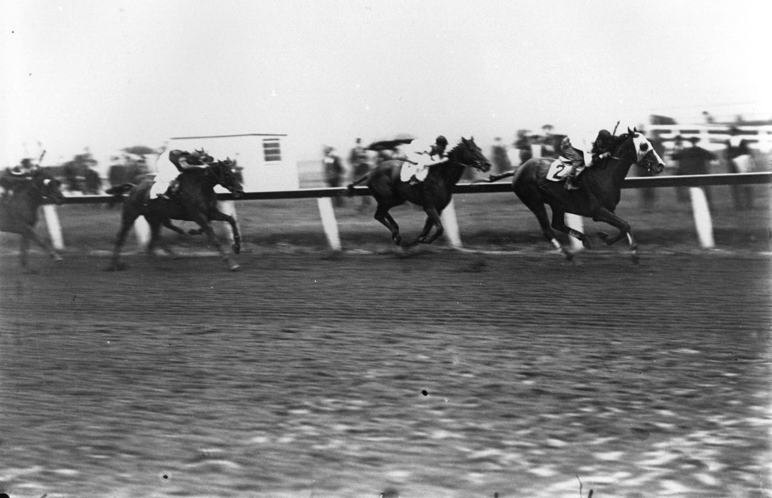 Grey Lag (Laverne Fator up) defeating John P. Grier and Exterminator in the 1921 Brooklyn Handicap at Aqueduct (Keeneland Library Cook Collection/Museum Collection)