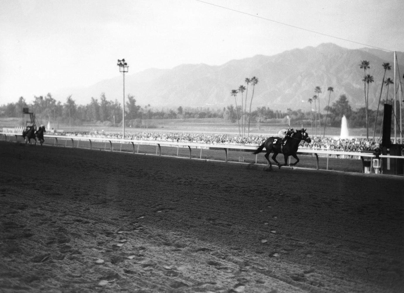 Gun Bow (Bill Shoemaker up) winning the 1964 Charles H. Strub Stakes at Santa Anita (Santa Anita Photo/Museum Collection)