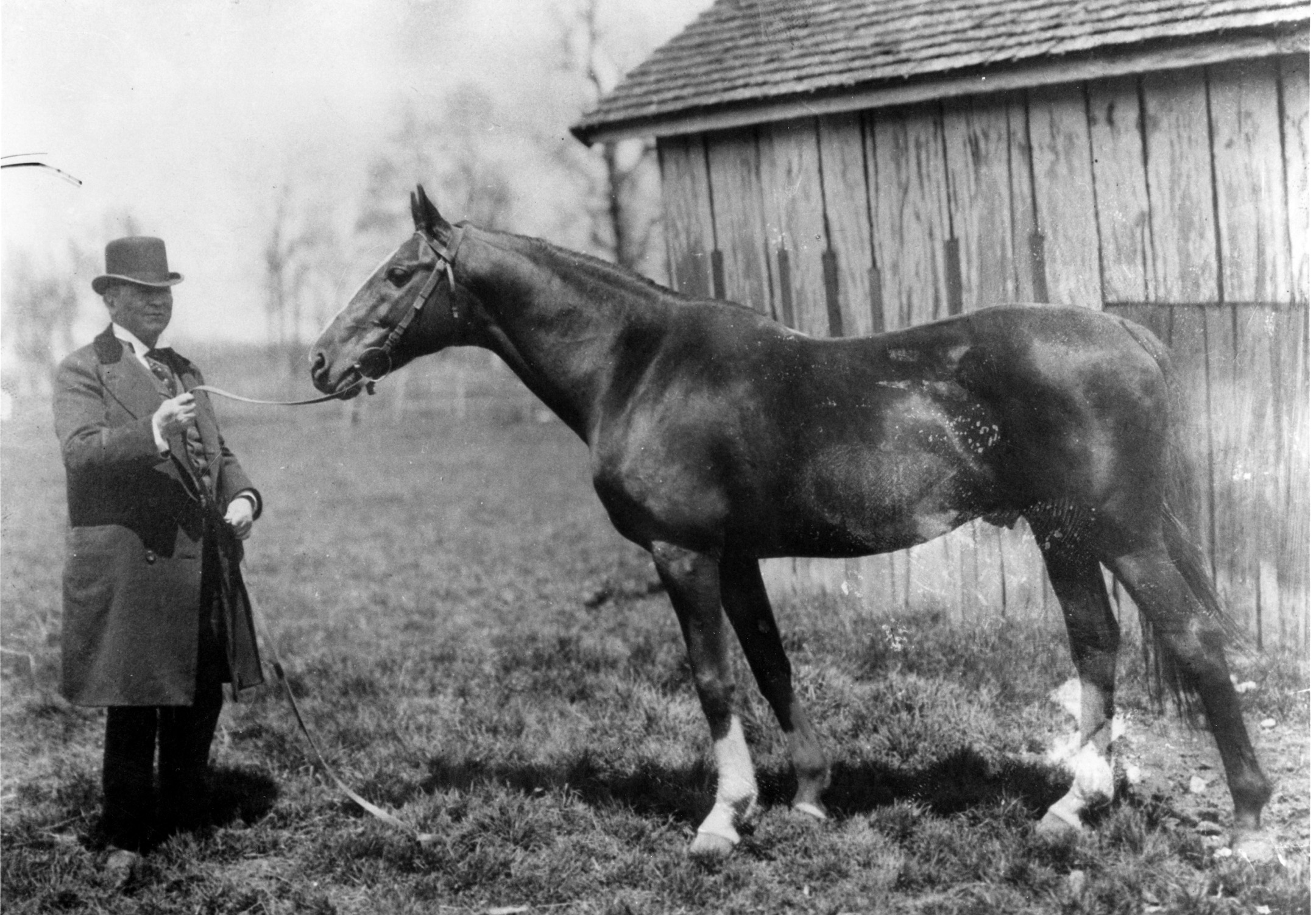 Hanover (Keeneland Library Cook Collection/Museum Collection)