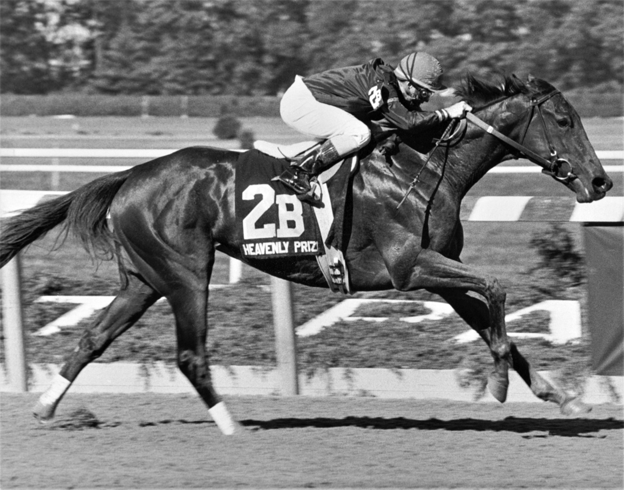Heavenly Prize (Pat Day up) winning the 1994 Beldame at Belmont Park (Keeneland Library Thoroughbred Times Collection)