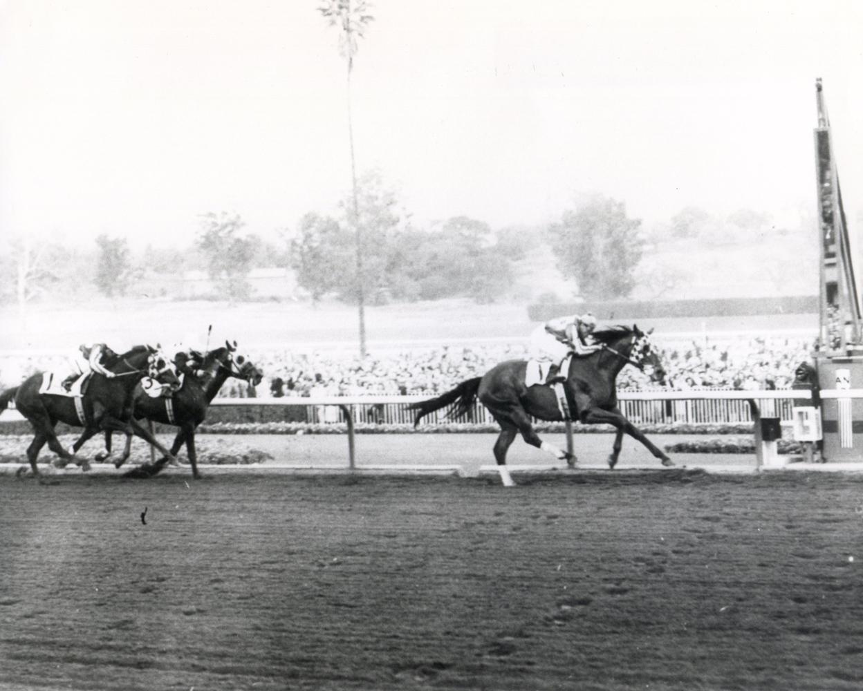 Hill Prince (Eddie Arcaro up) winning the 1952 San Marcos Handicap at Santa Anita (The BloodHorse/Museum Collection)