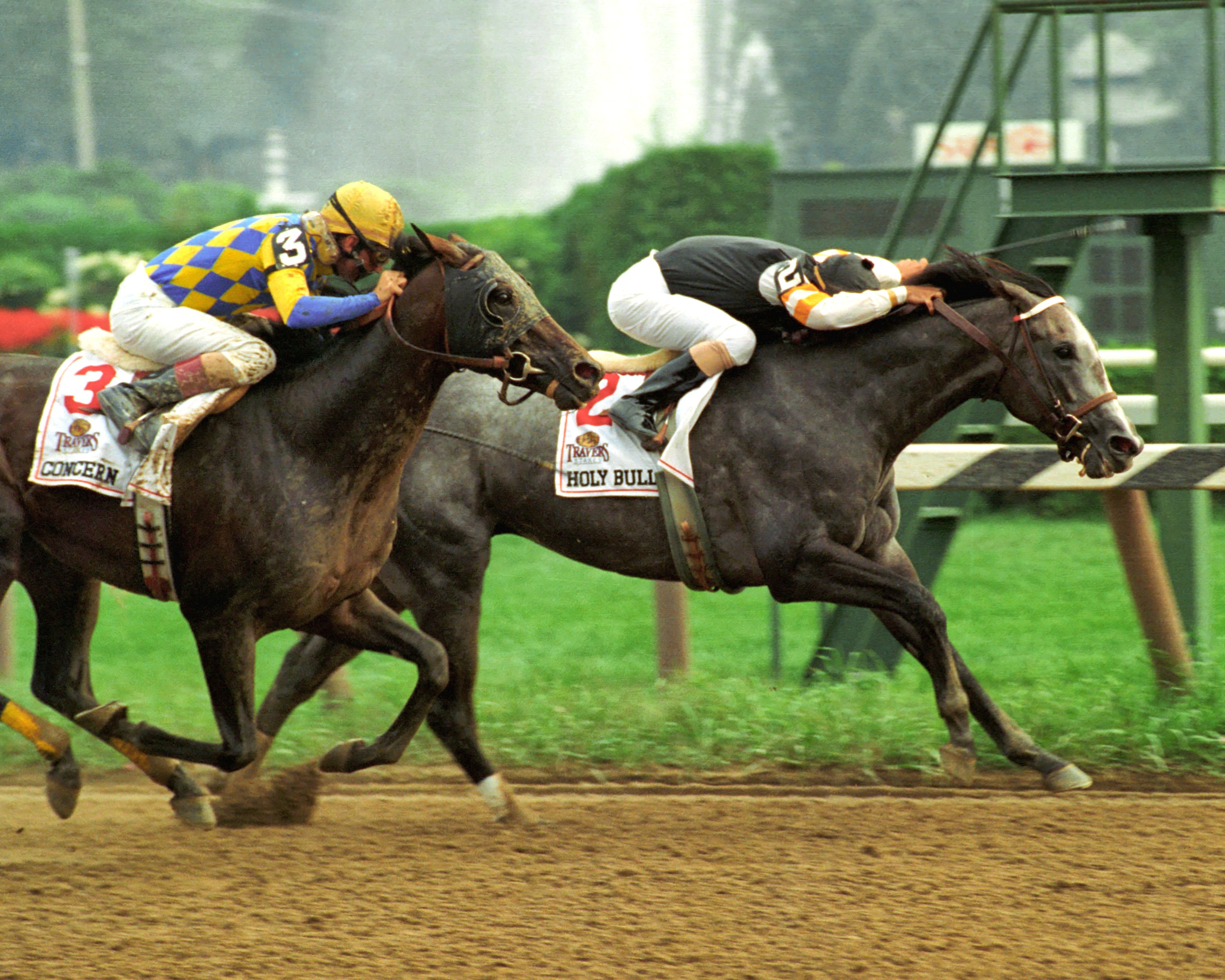 Holy Bull, Mike Smith up, winning the 1994 Travers Stakes (Skip Dickstein)