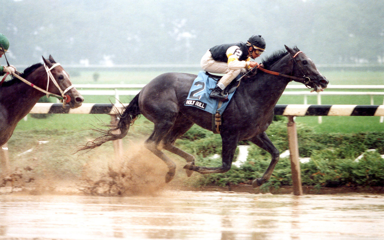 Holy Bull (Mike Smith up) winning the 1993 Futurity at Belmont Park (Barbara D. Livingston/Museum Collection)