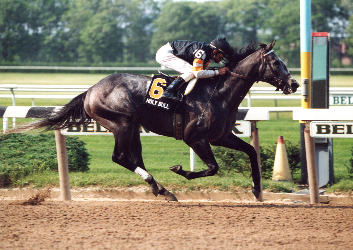 Holy Bull (Mike Smith up) winning the 1994 Metropolitan Handicap at Belmont Park (Barbara D. Livingston/Museum Collection)